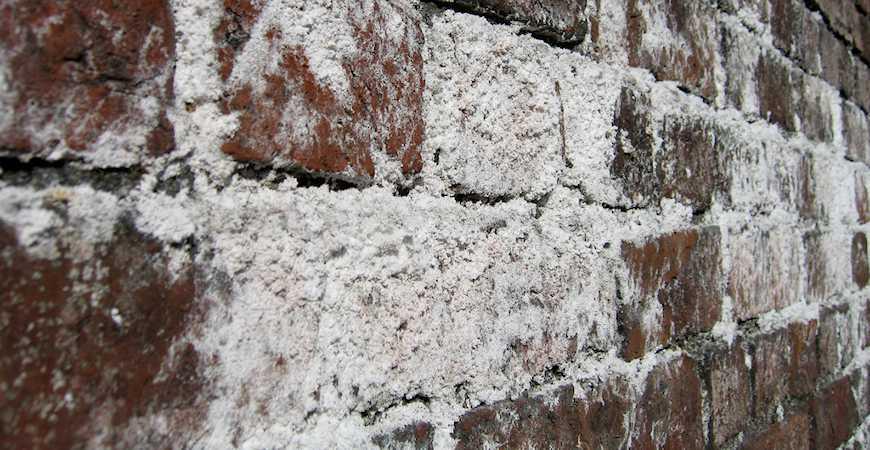 Severe efflorescence on brick wall -  Source: askwetandforget.com