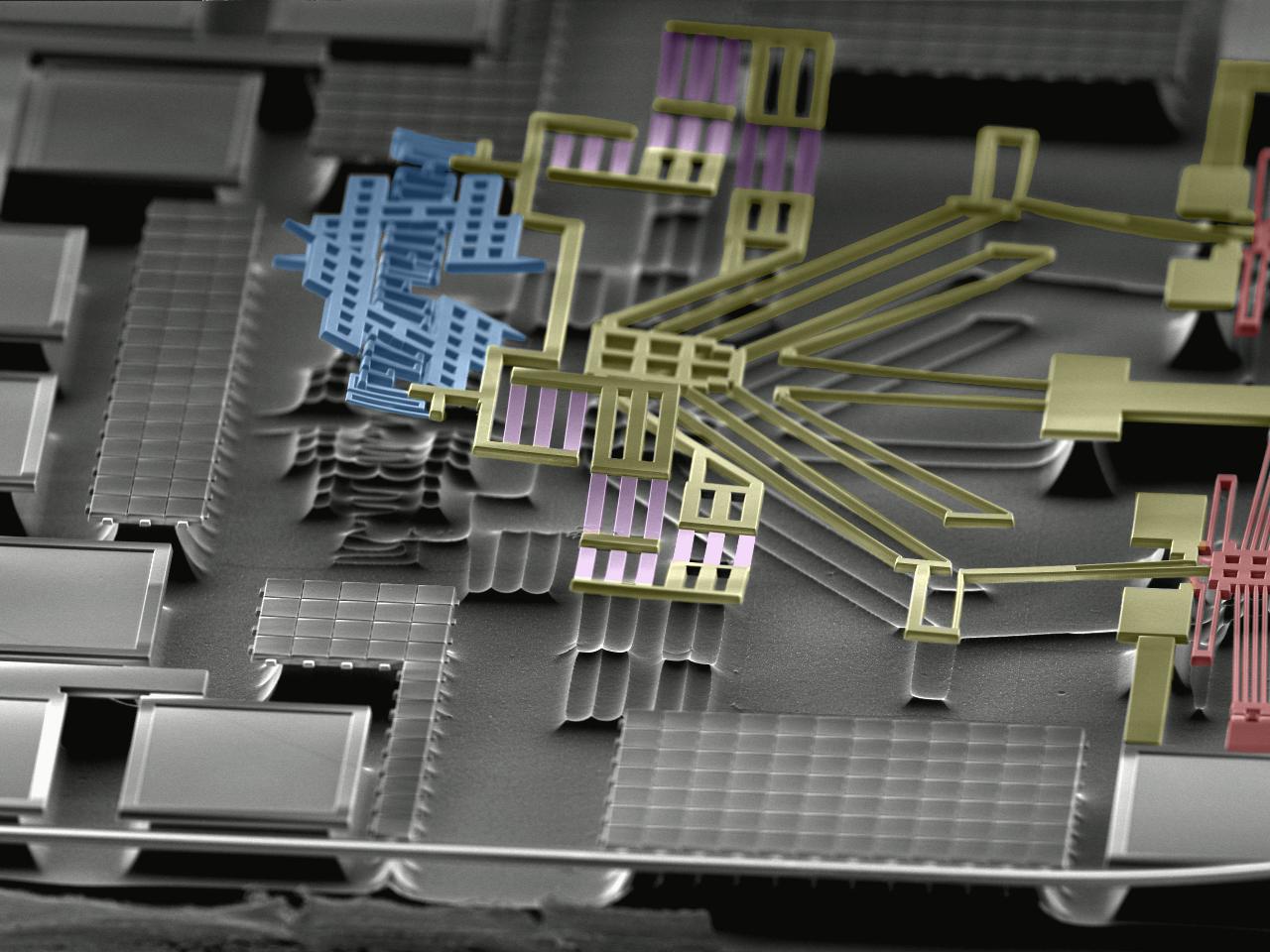 Colourized SEM Image of a single-chip AFM