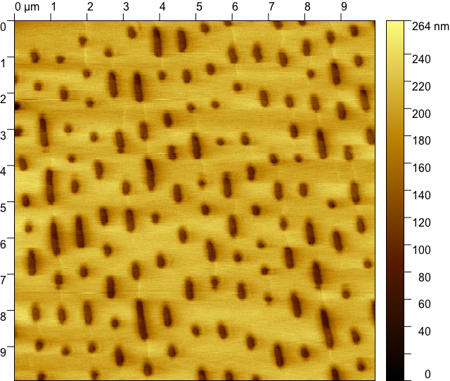 Topography image of a DVD.