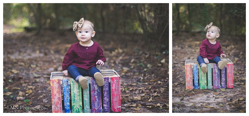 LMN Photography Cypress Baby Photographer