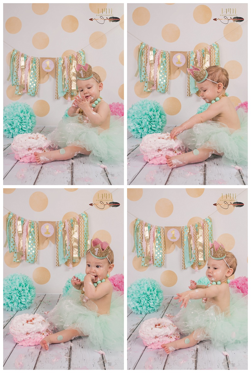 Tomball TX 1st Birthday Photographer