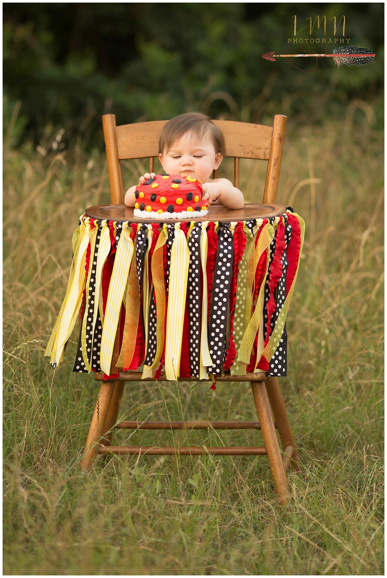 Cypress TX Children's 1st Birthday Photographer