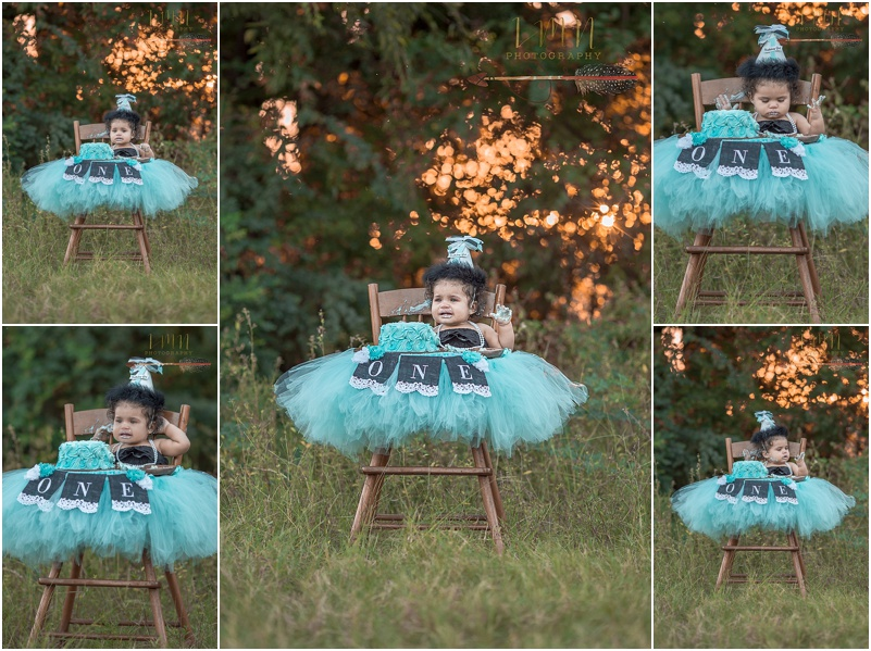 Cypress TX 1st Birthday Photographer 77429 77433
