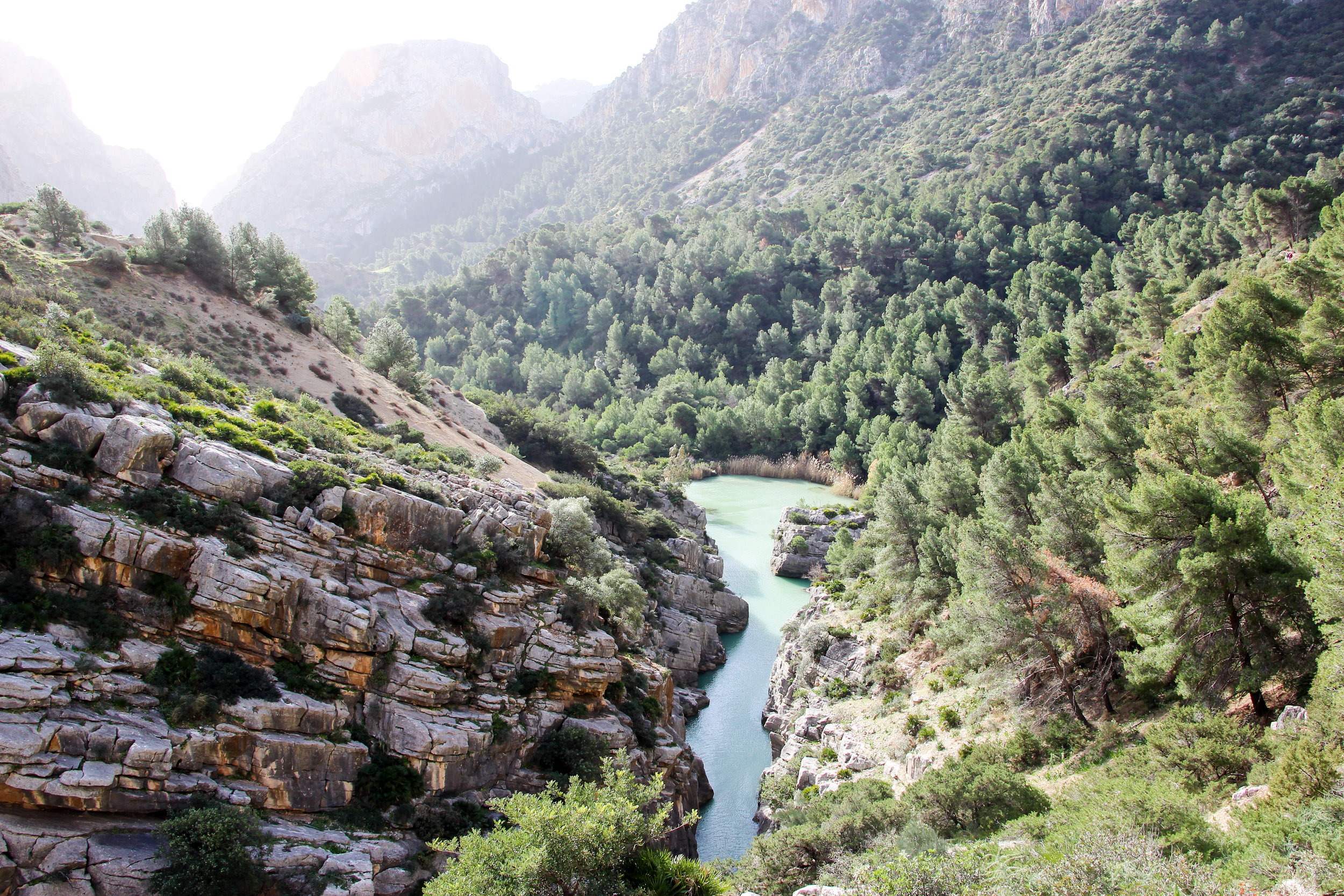 Andalusia, Spain, Europe | www.DoLessGetMoreDone.com |