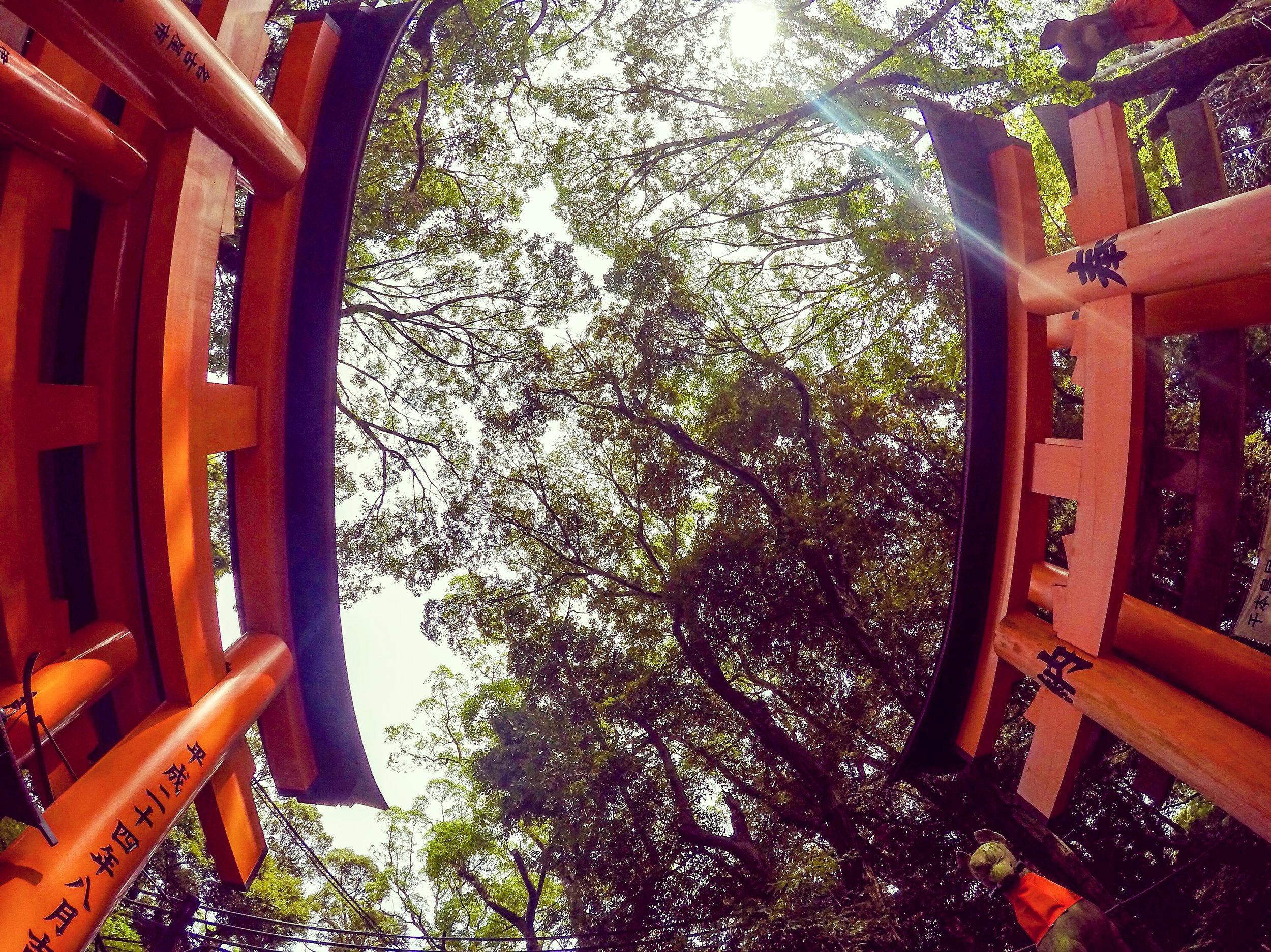 Fushimi Inari Taisha, Kyoto, Japan, East Asia | DoLessGetMoreDone.com |