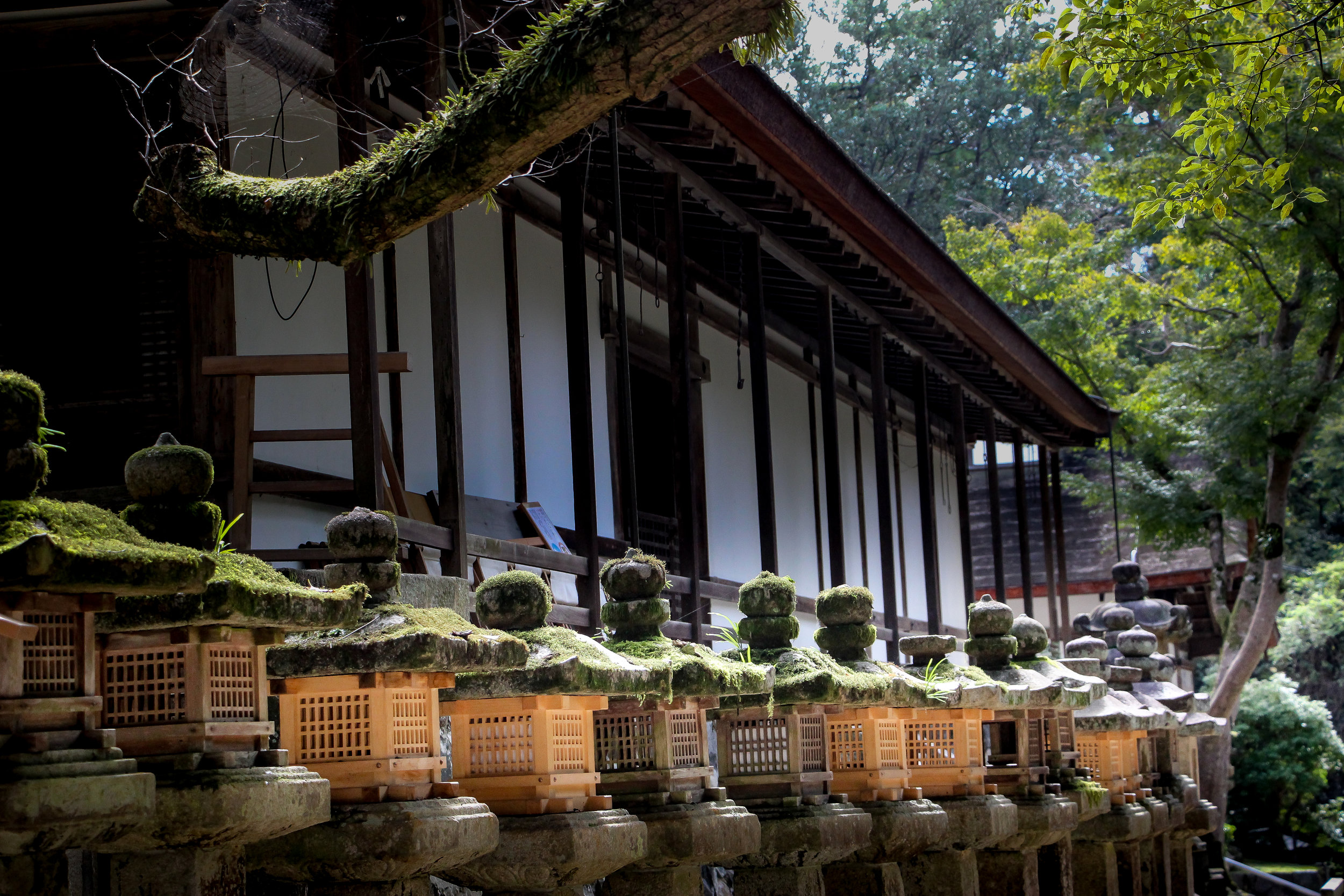 stone lantern, Nara, Japan, Asia   DoLessGetMoreDone.com   Where Do You Feel Right At Home?