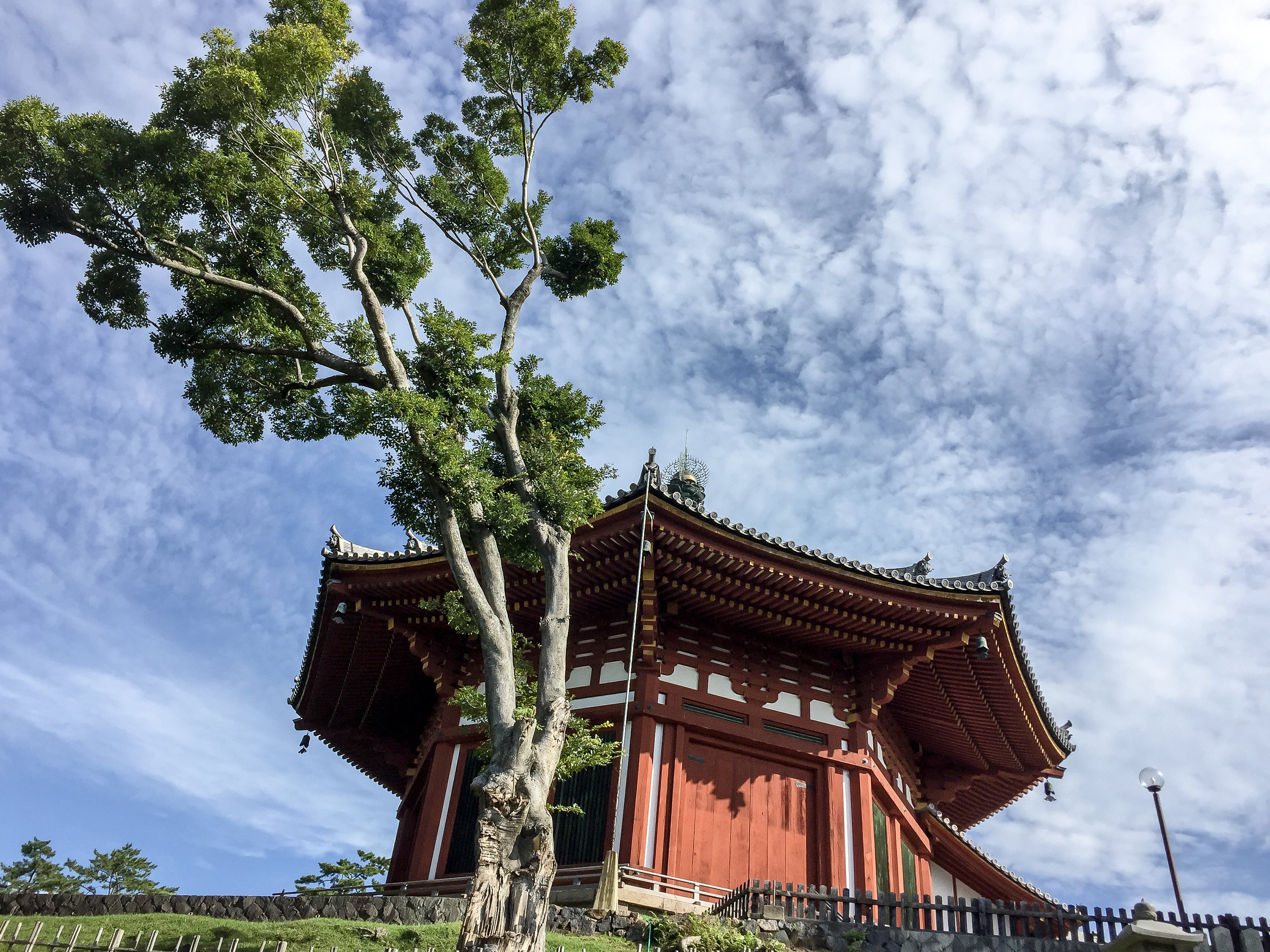 Kofukuji Temple, Nara, Japan, Asia   DoLessGetMoreDone.com   Where Do You Feel Right At Home?