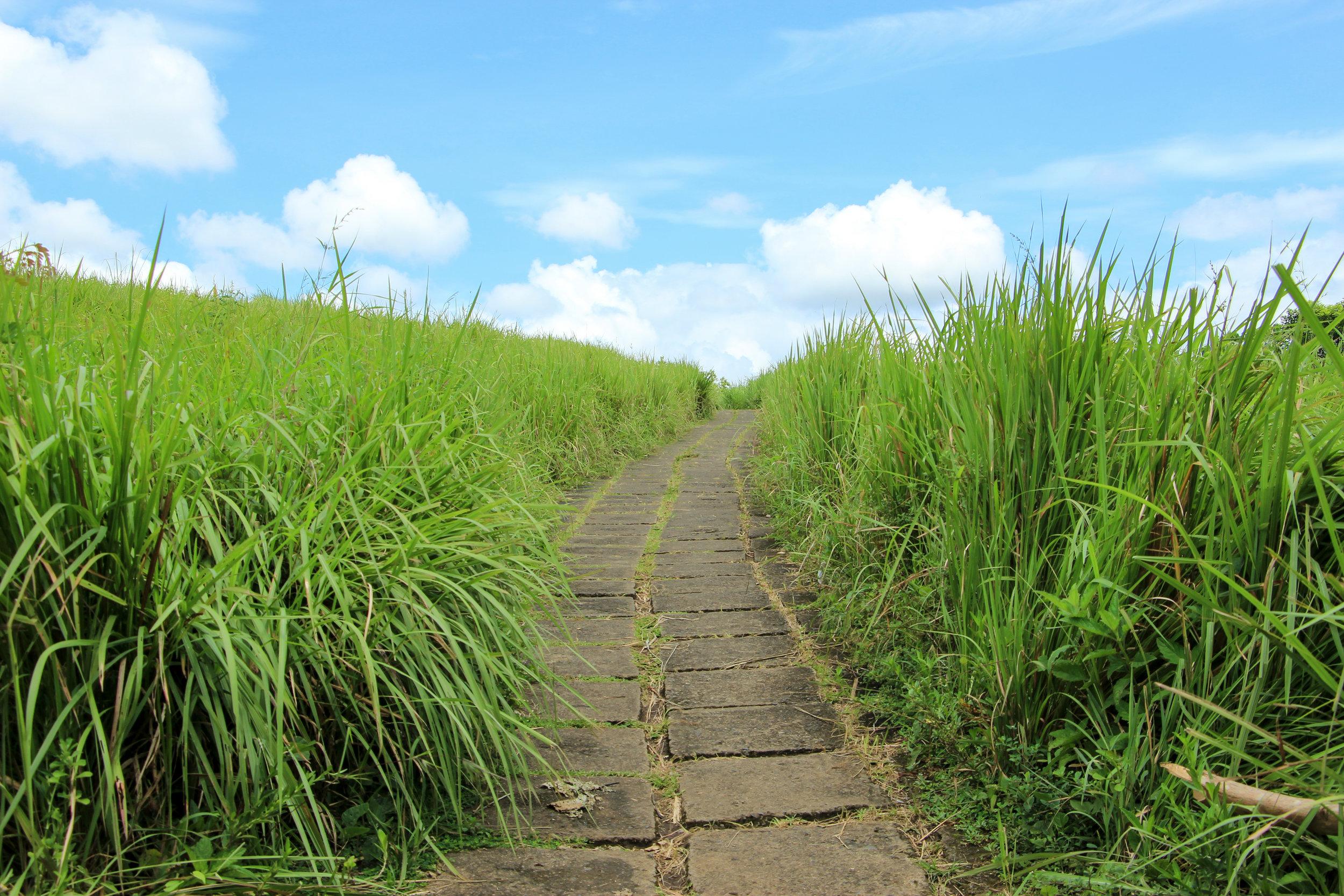 Tjampuhan Sacred Hills, Ubud, Bali, Asia | DoLessGetMoreDone.com |
