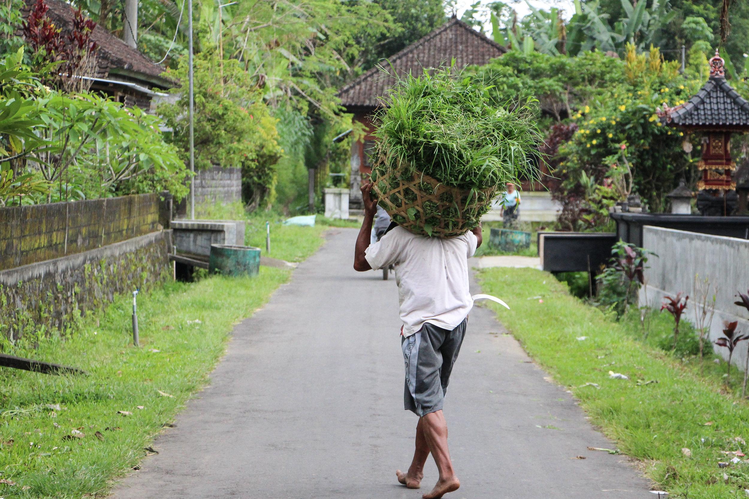 people, everyday life, Bali, Indonesia, Asia | DoLessGetMoreDone.com |