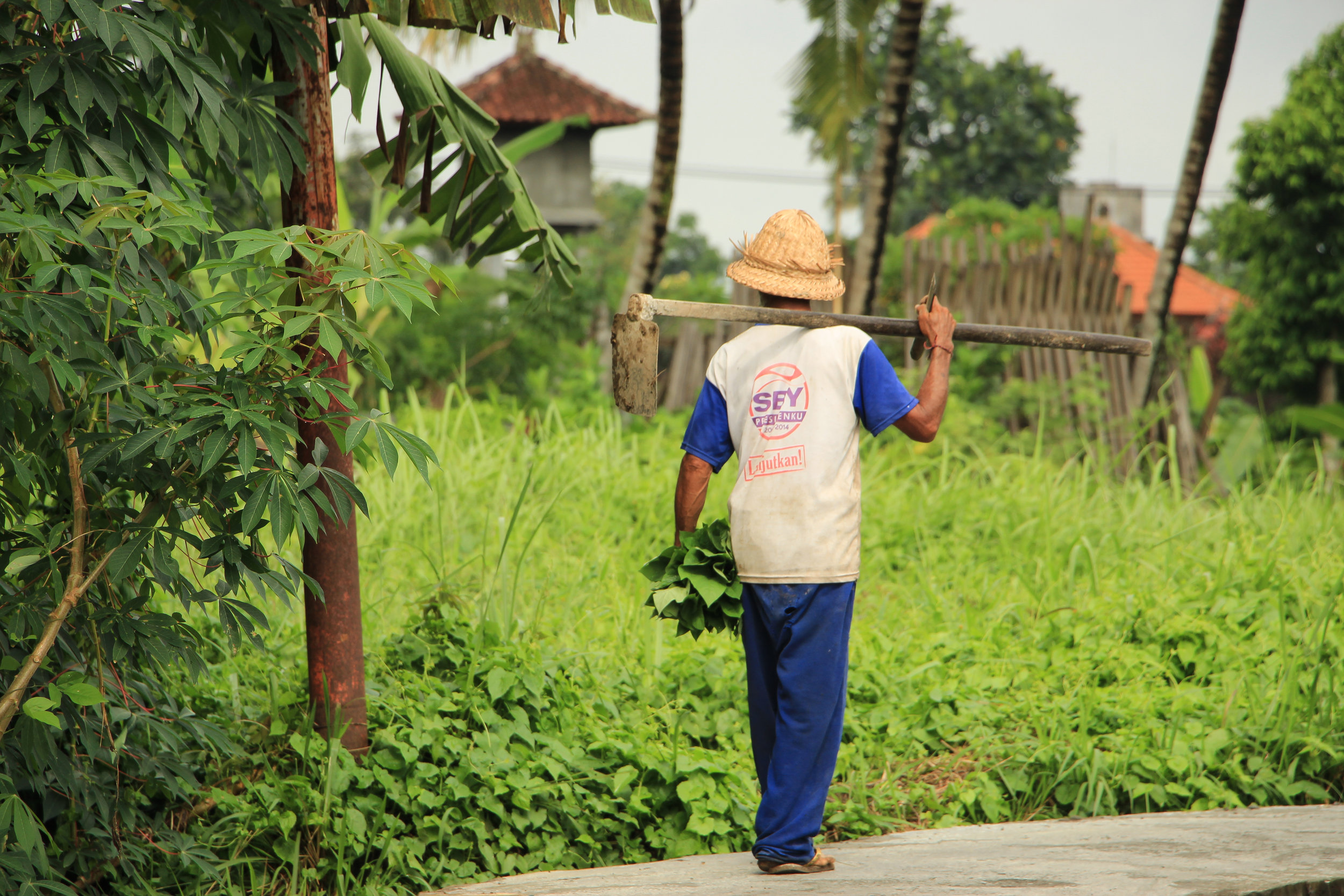 farmer, Bali, Asia | DoLessGetMoreDone.com |