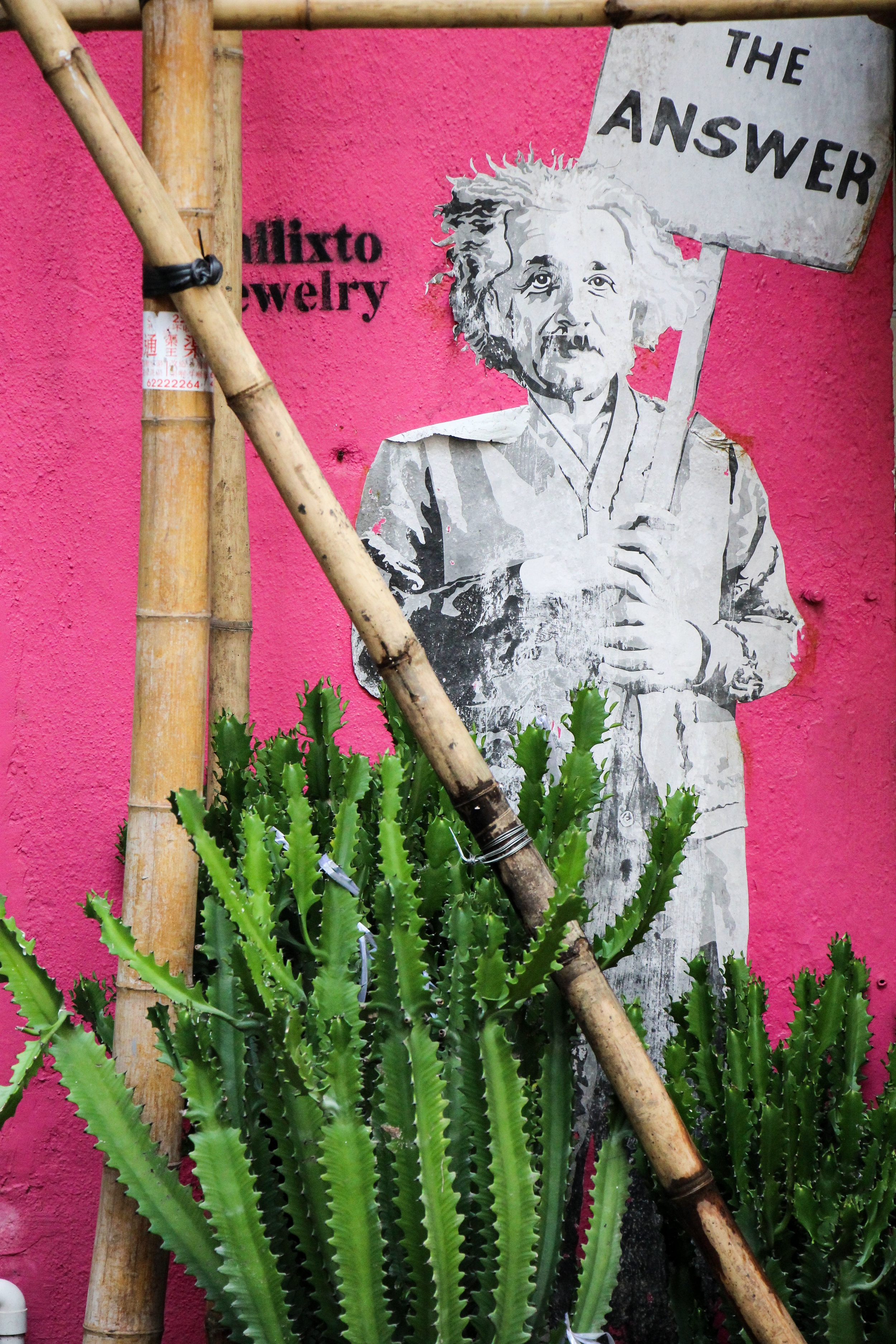 Hong Kong, Hong Kong Island, Street art, einstein, Asia | DoLessGetMoreDone.com |
