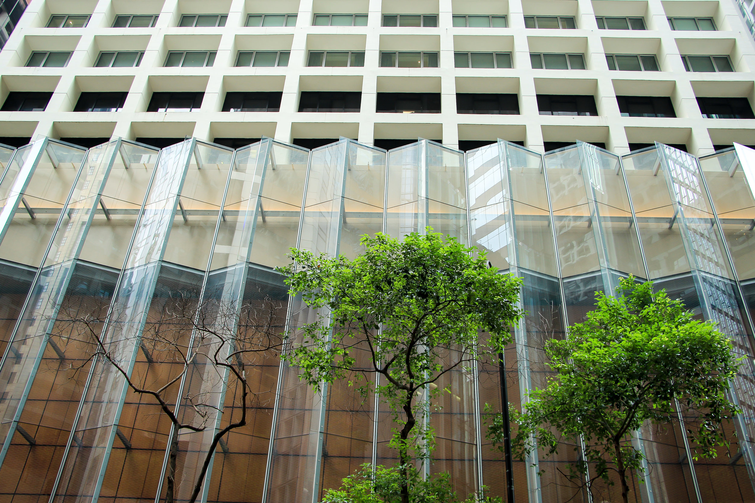 HONG KONG, hong kong island, STREET PHOTOGRAPHY, architecture, tree, ASIA | DOLESSGETMOREDONE.COM |