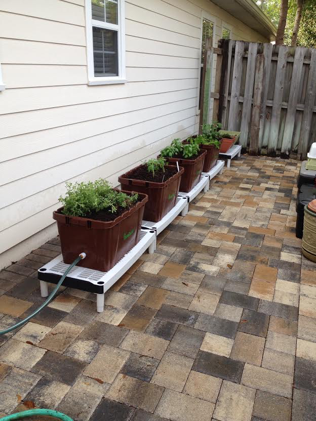 """Last year, we purchased 4 FarmDaddies for a container garden.  I've attached a photo of our plantings.  I cannot say enough about how easy there were to set up, and self-maintain.  We attached the first FarmDaddy to a rain barrel and they literally took care of themselves from day 1.   We grew oregano (which lasted through the winter and is now in its second season), tomatoes, peppers, and basil.  My only concern was that the plants grew so well, your recommendation for number of plants/farmdaddy was too high.  My bell peppers were so healthy, we harvested them until late November."""
