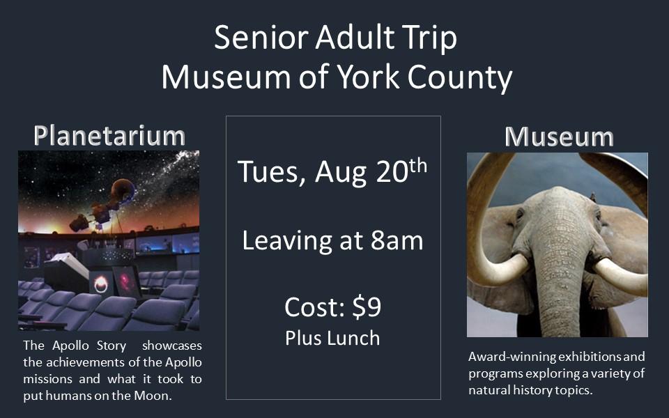 york museum.jpg