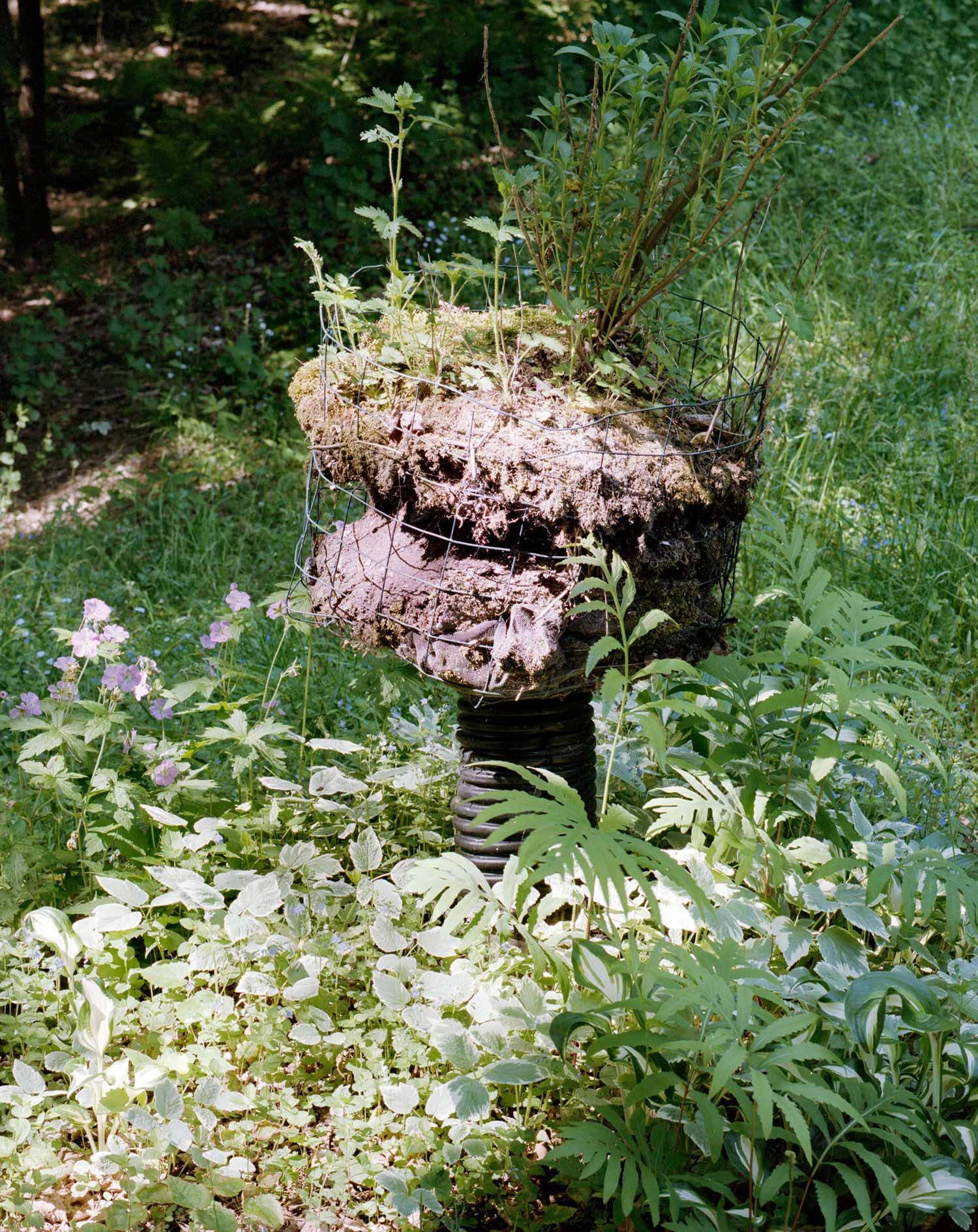 planter-web-1500.jpg