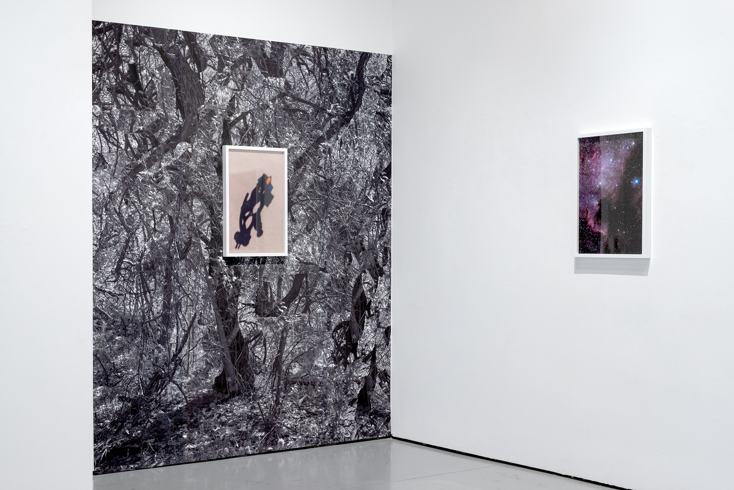 Installation view. Solo exhibition at the West Gallery, California State University Northridge, June 2019.