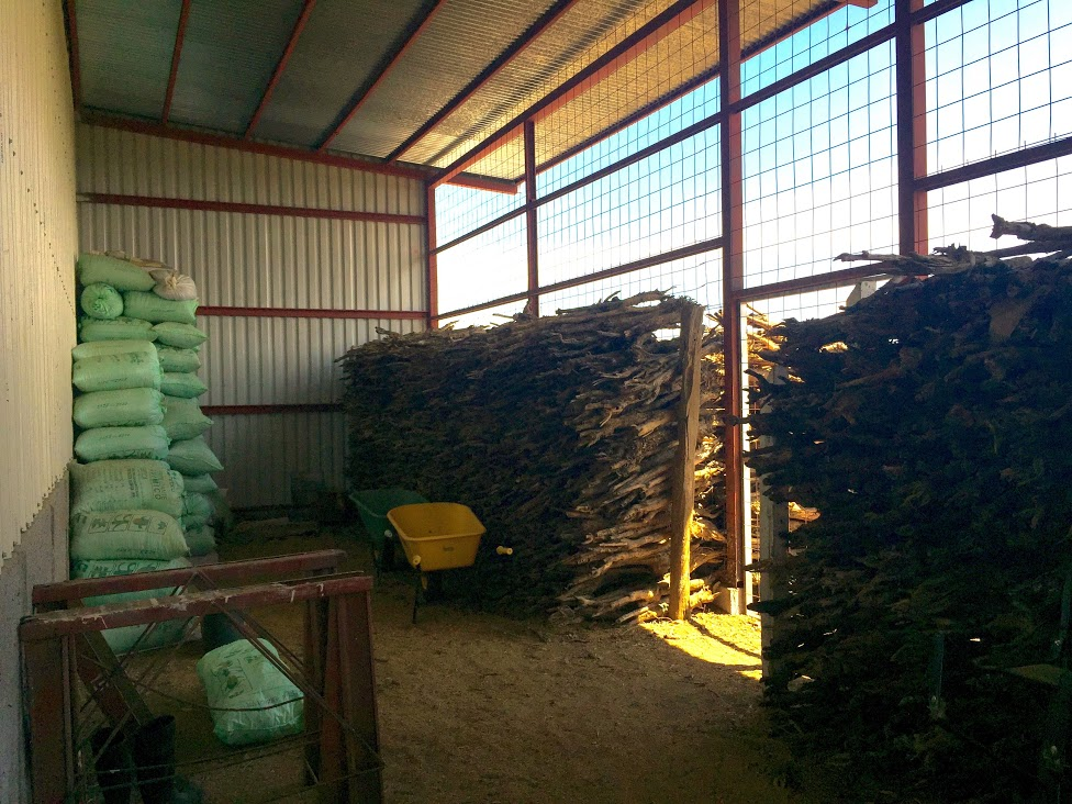 Wood from stumped trees is saved and used for firewood for the mechanical dryers & for mulch.
