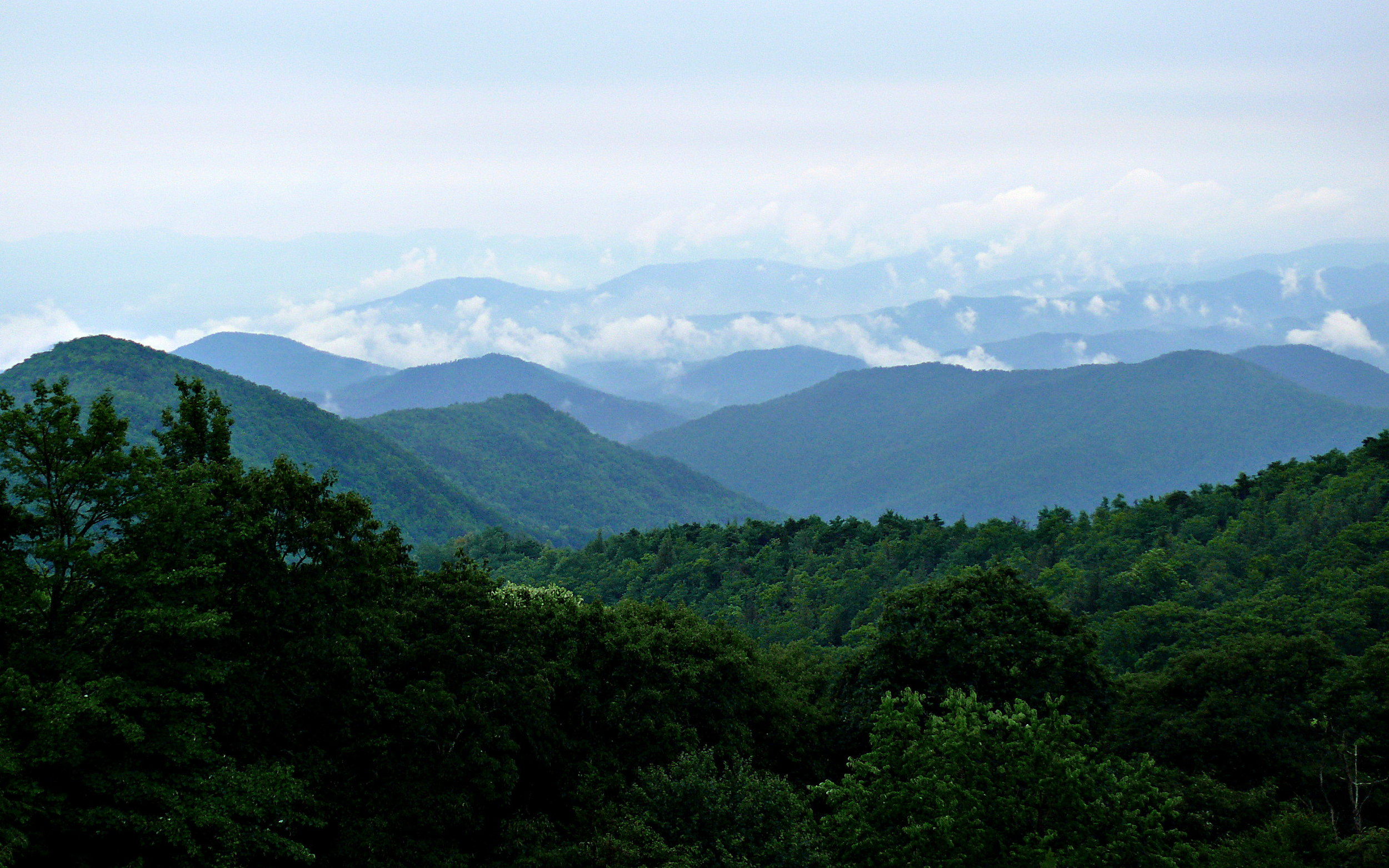 Rainy_Blue_Ridge-27527.jpg