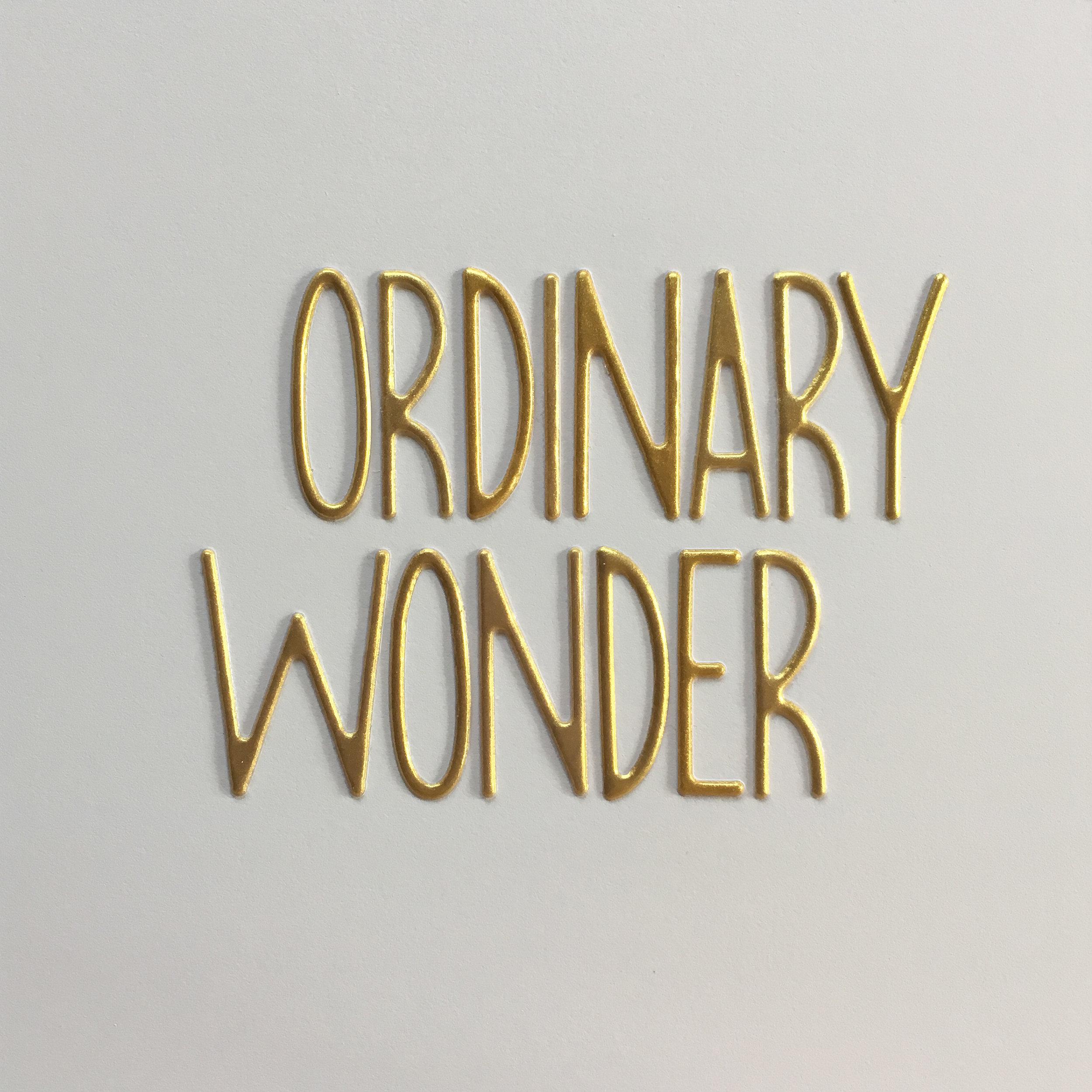 ordinary wonder.jpg