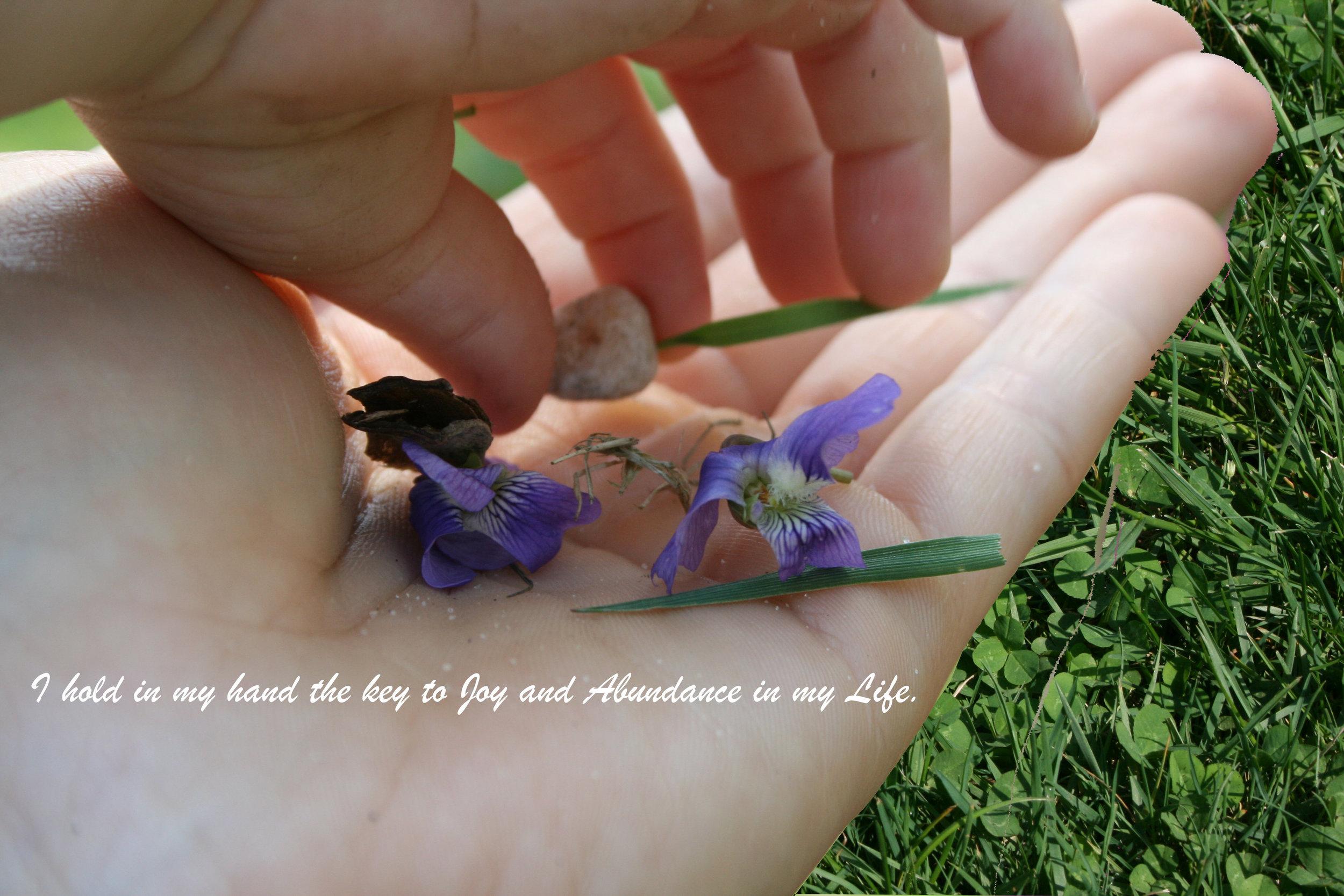 Garden in Hand_Joy and Abundance.jpg