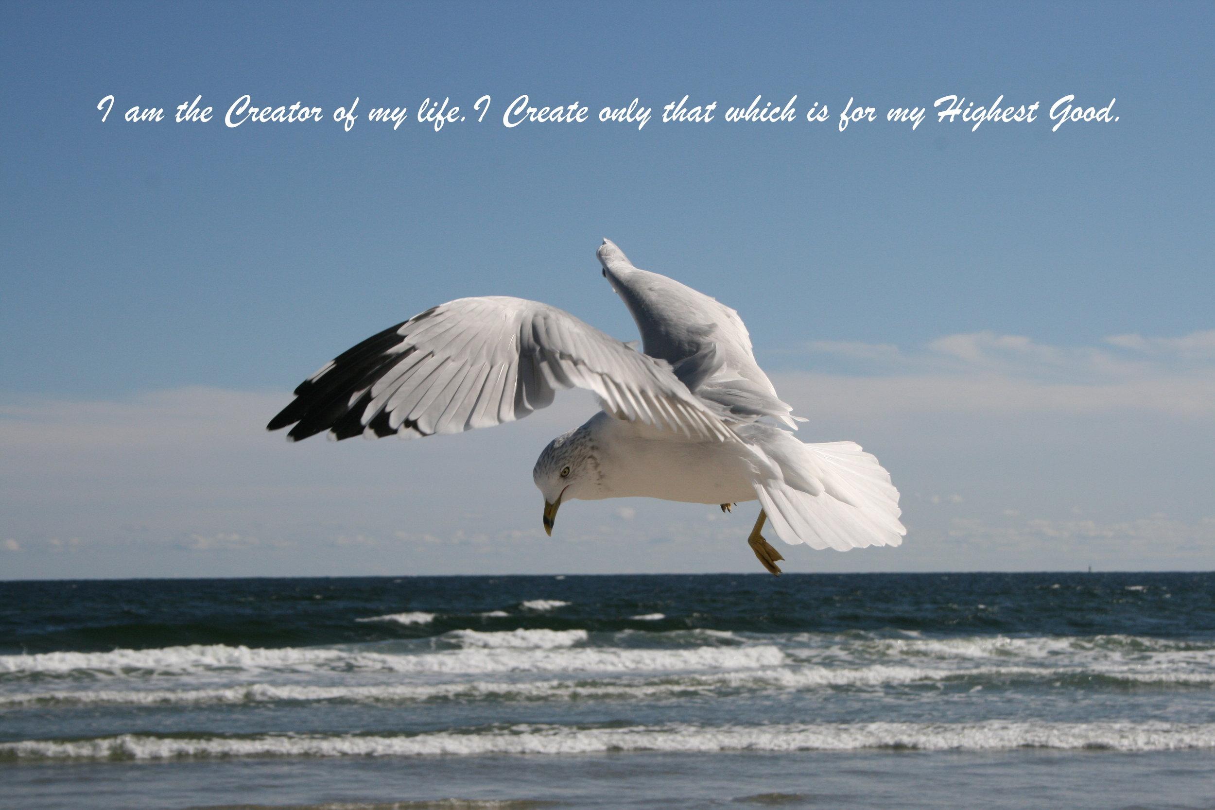 seagull highest good creator.jpg