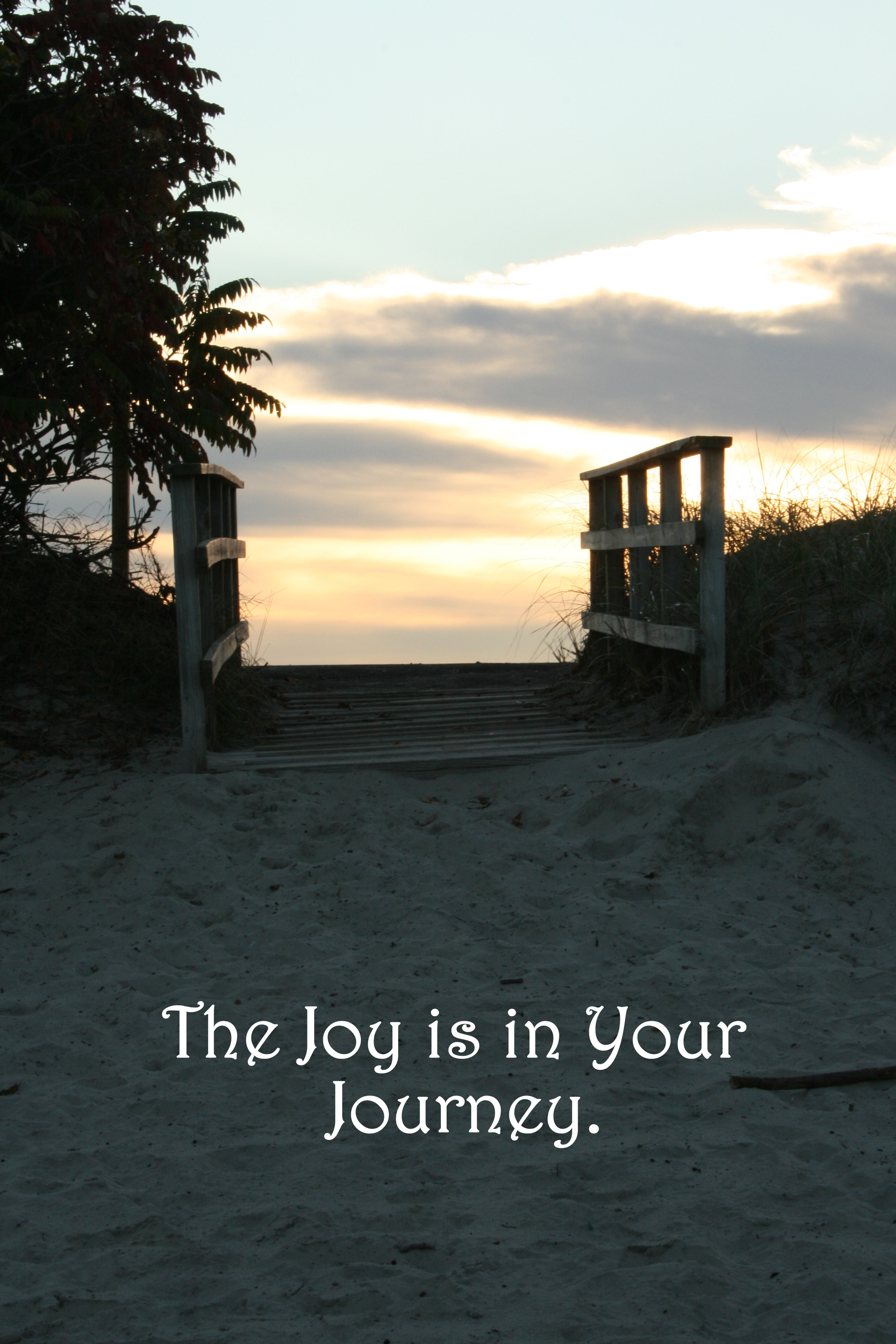 Sand path_The Joy is in Your journey.jpg