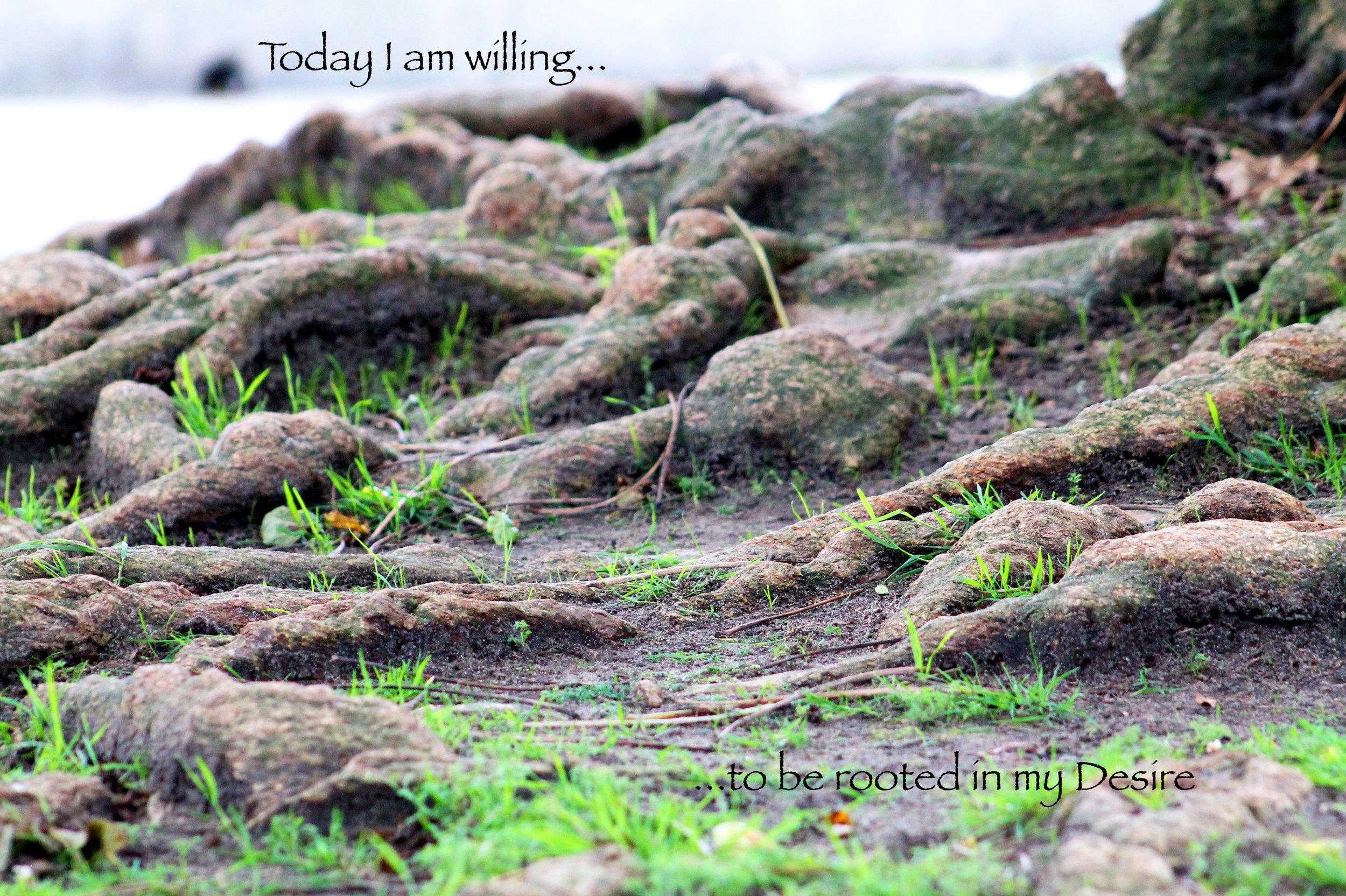 Roots_Desire.jpg