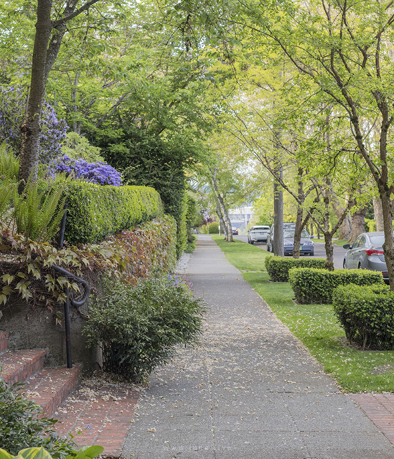 This is a photograph of a view down a sidewalk in a neighborhood in Capitol Hill, an area in Seattle, Washington. This picture was taken on a sunny spring day in May.  Camera used: Canon 6d Mark II