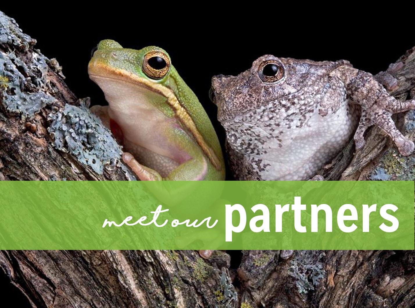 partnersbuttonnew.jpg