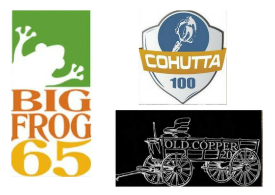 roost logos.png