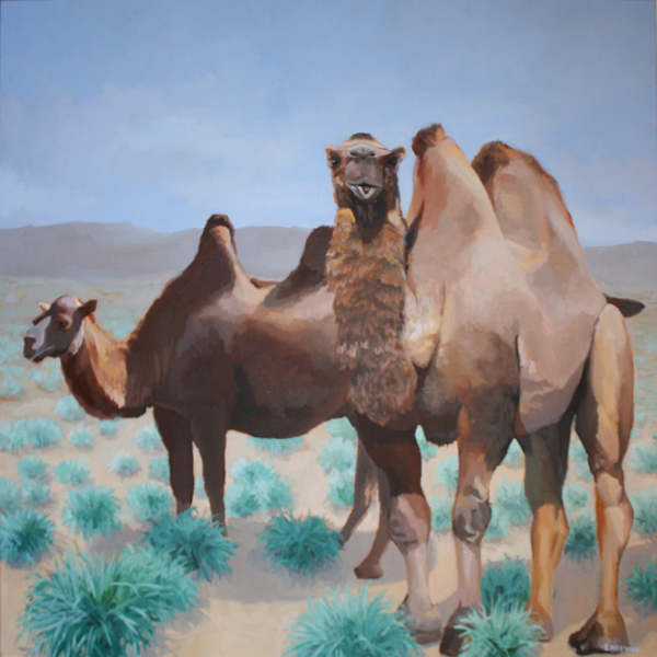 Two Camels   2014 oil on canvas 36 x 36""