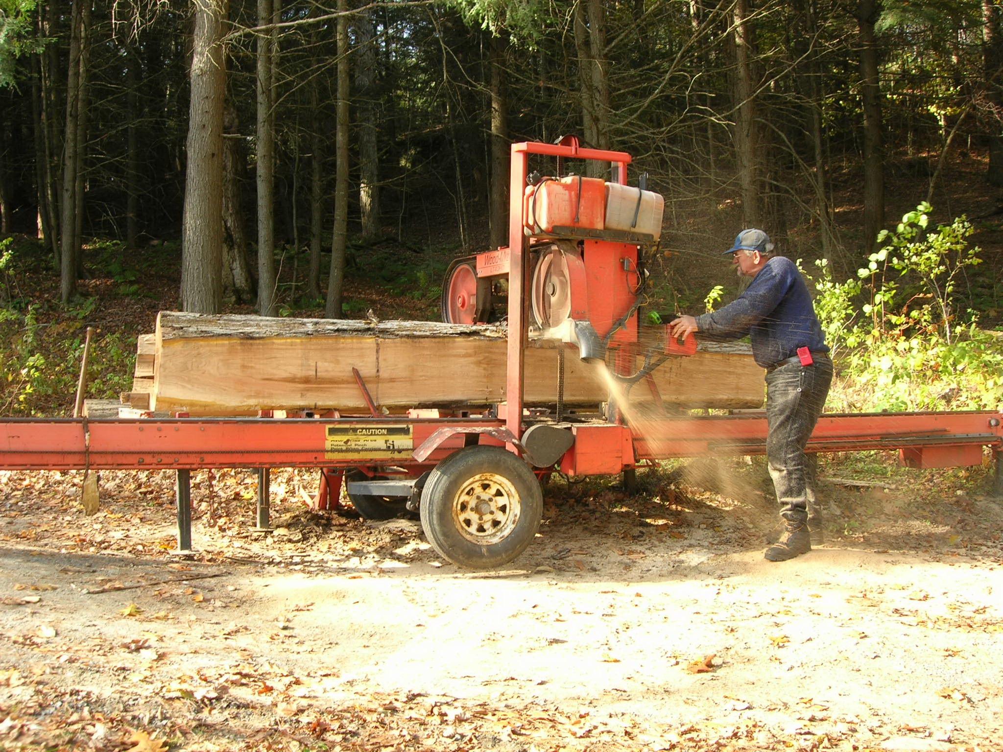 """Sawing a butternut log about 24"""" diameter"""