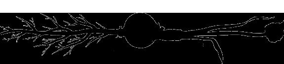 Longkeeper-Graphic.jpg