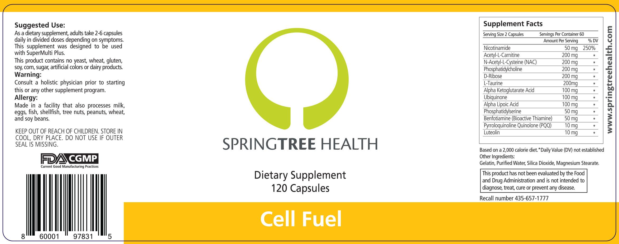 SpringTree_Cell_Fuel_OL_07.29.19