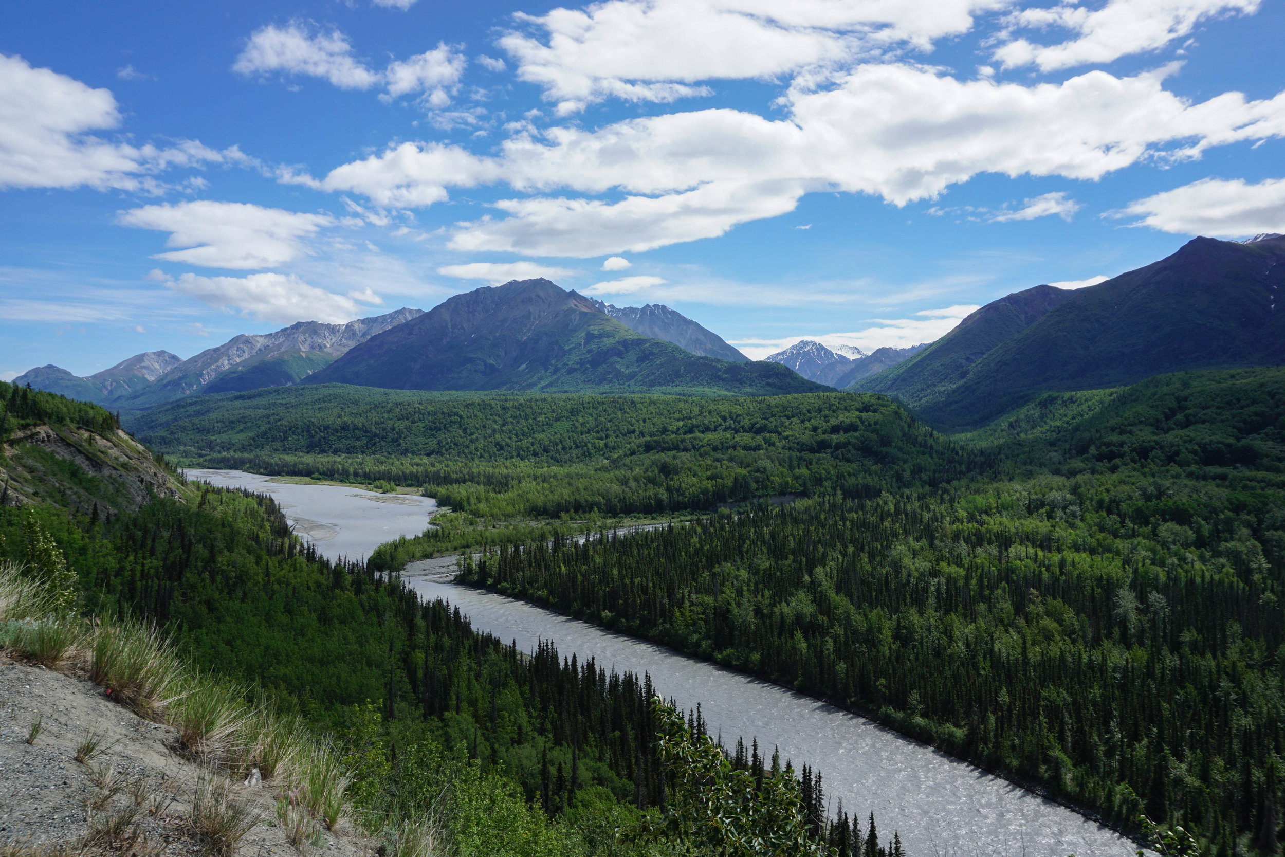 I took this on my way to see Matanuska Glacier.