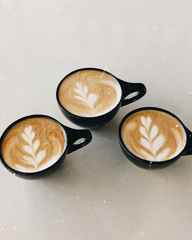 latte art has been fun to learn at the new job☕️