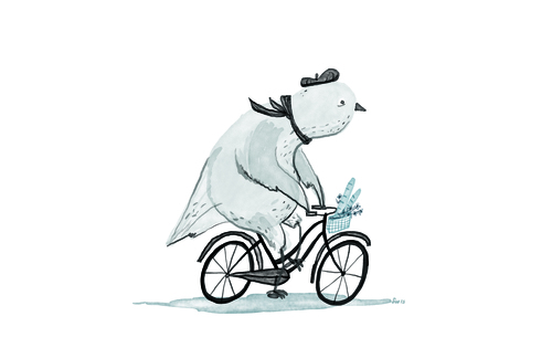 pigeonbike.jpg