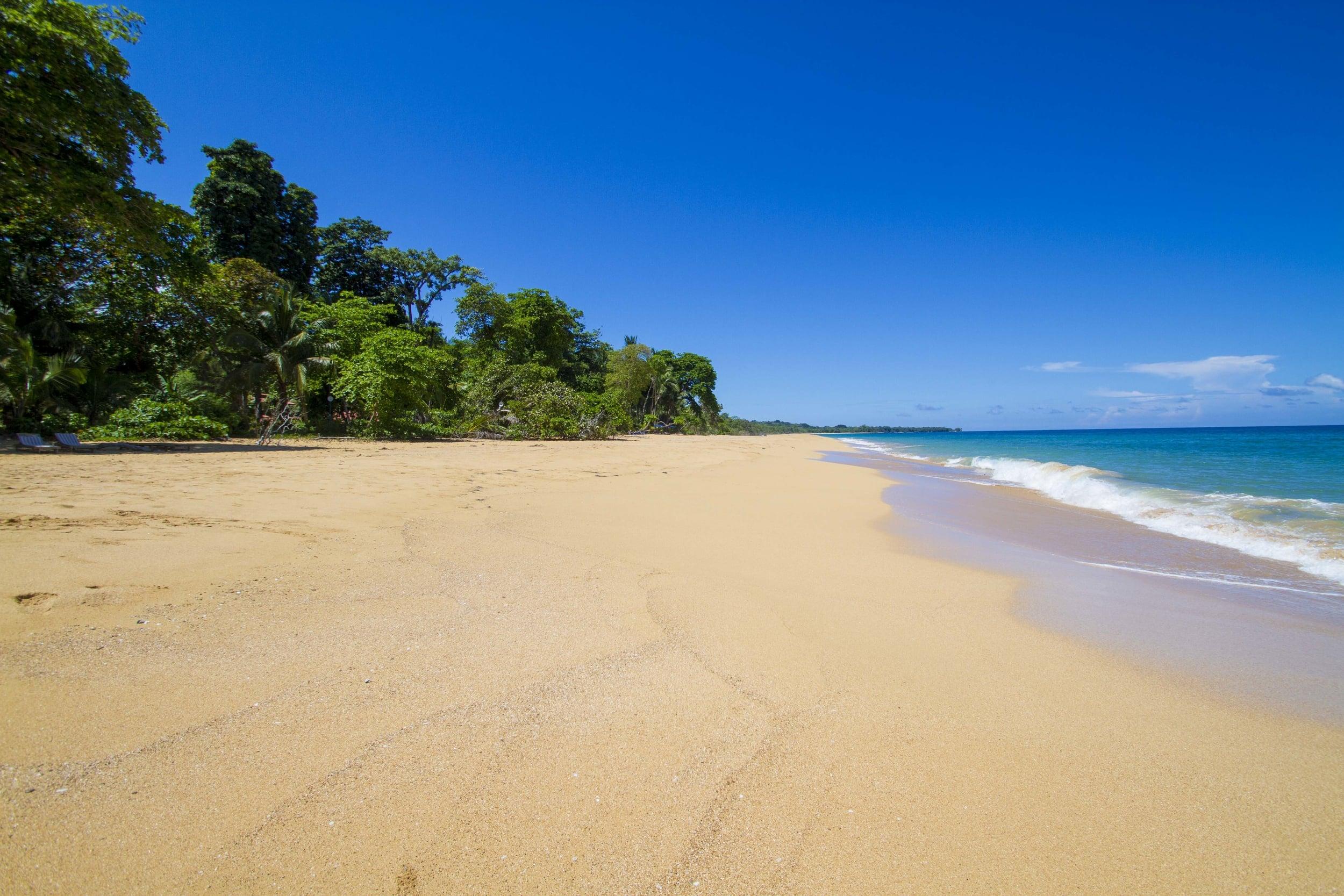 Photo by Luke Scherba. Playa Bluff, Bocas del Toro, Panama