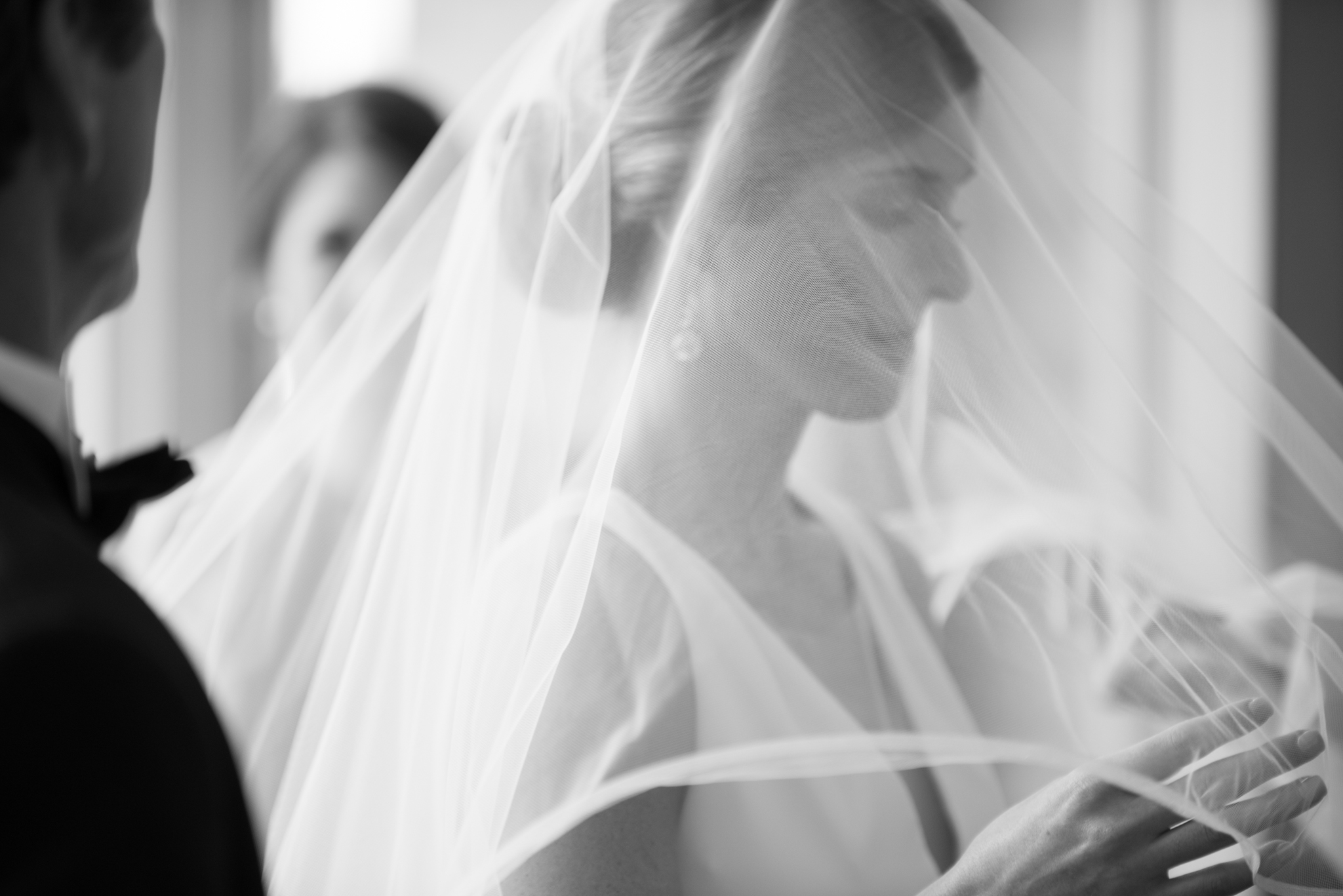 brides veil photo