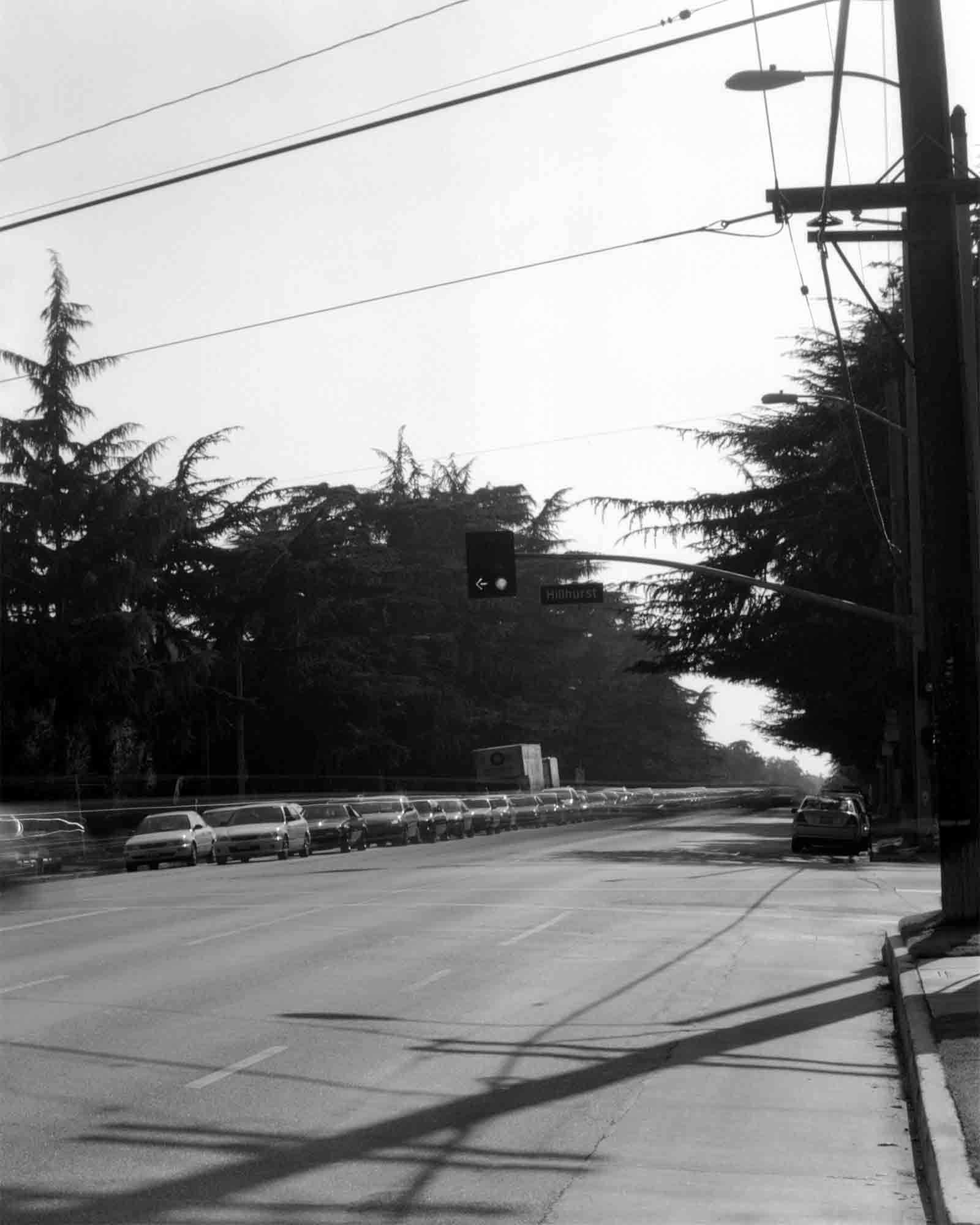 42-Cedar-#11.jpg