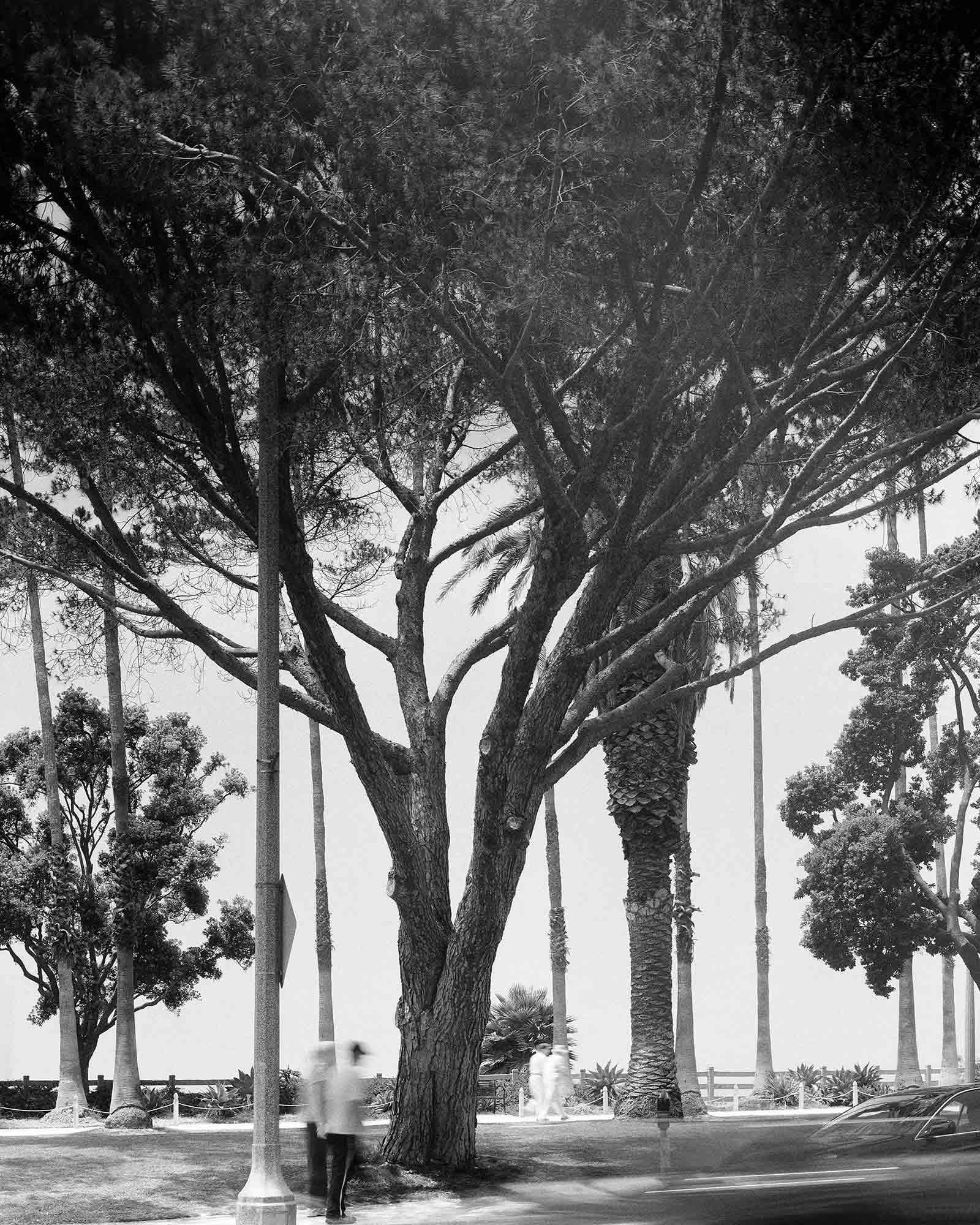 17-Pine-#7,-Santa-Monica,-2004.jpg