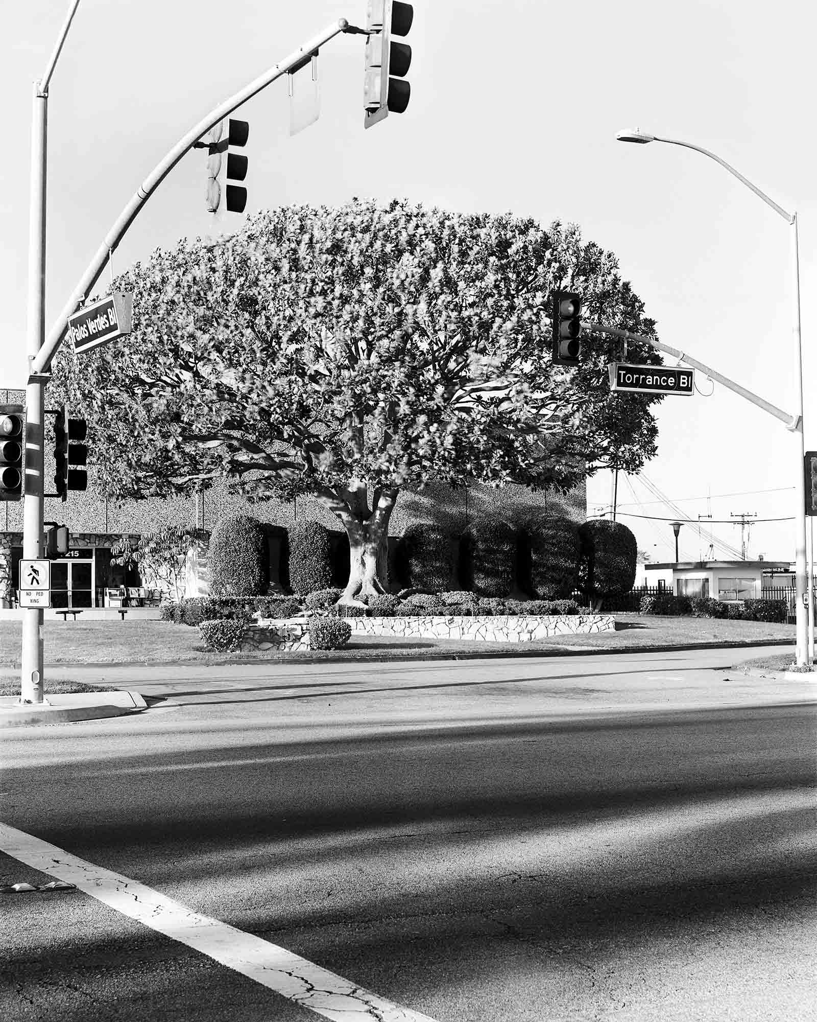 27-Magnolia-#1,-Torrance,-2002.jpg
