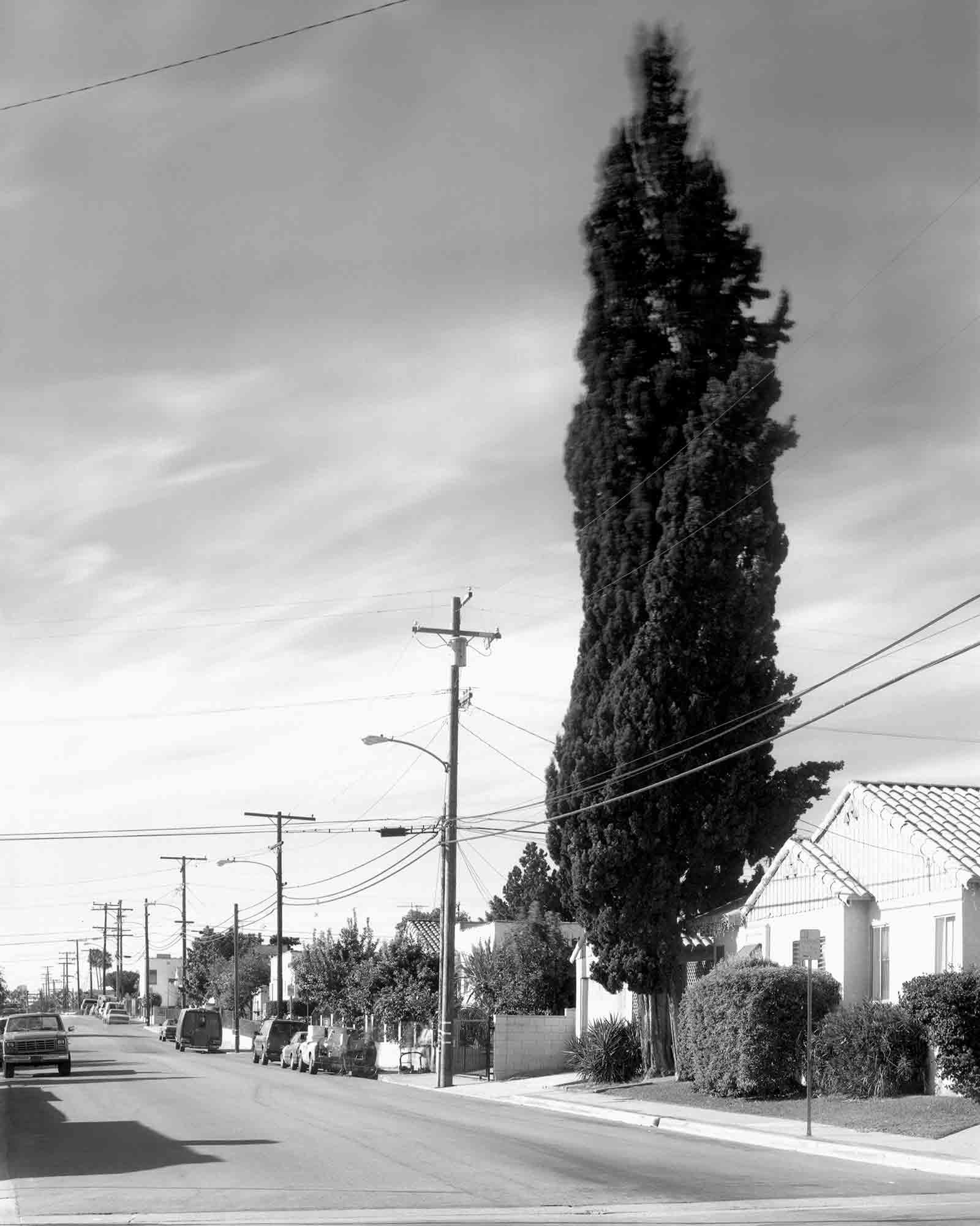 39-Cypress-#7,-Echo-Park,-2002.jpg