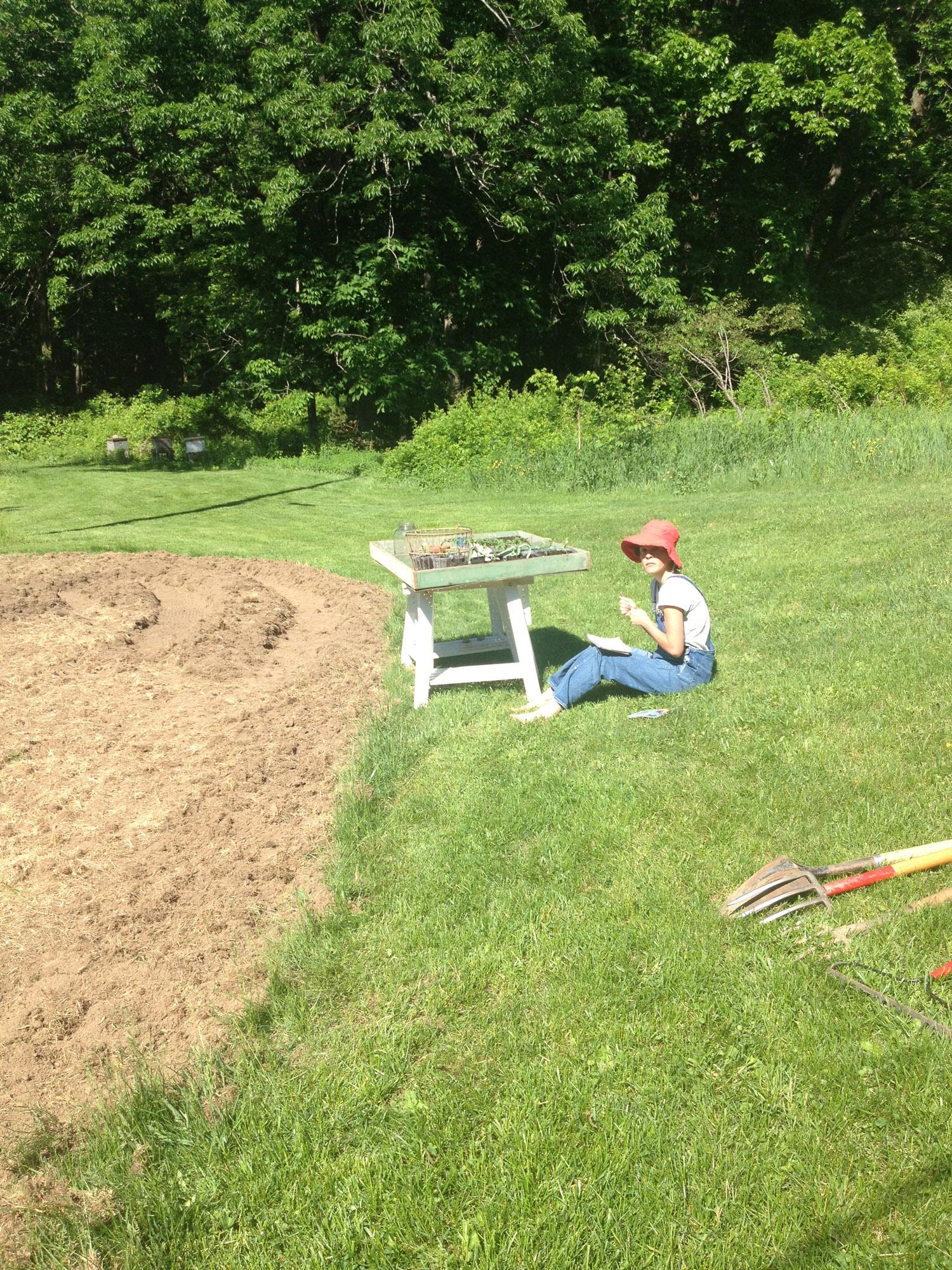 gardenbeginning.web.jpg