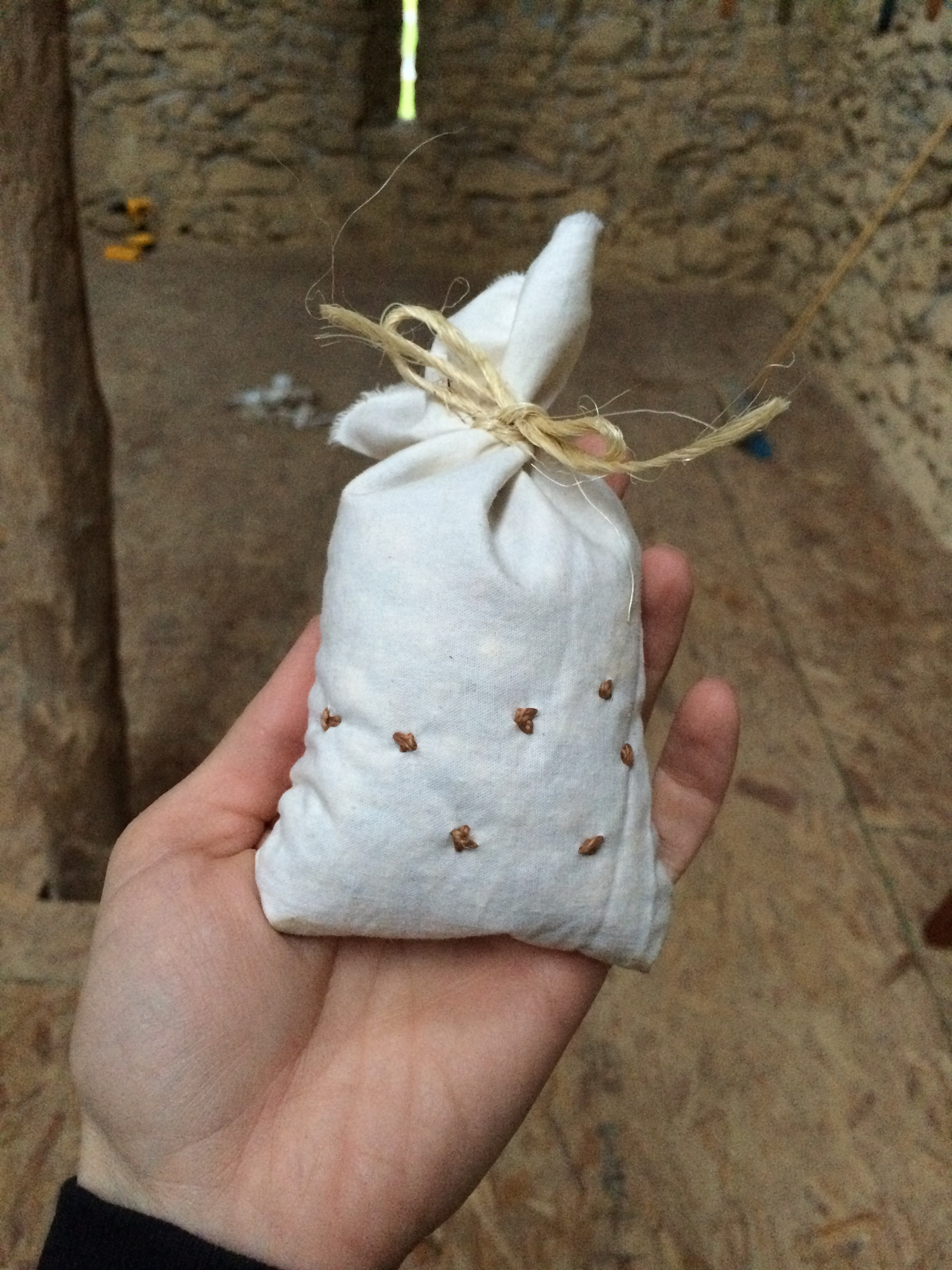 Seed bag (embroidered with Pleiades constellation) for humans to refill feeders.