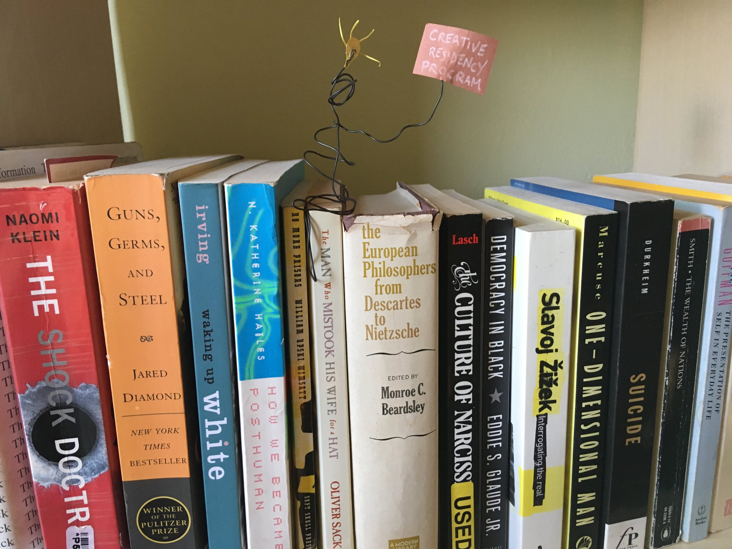 HWC- imageCreative Residency in books- shock doctrine.JPG