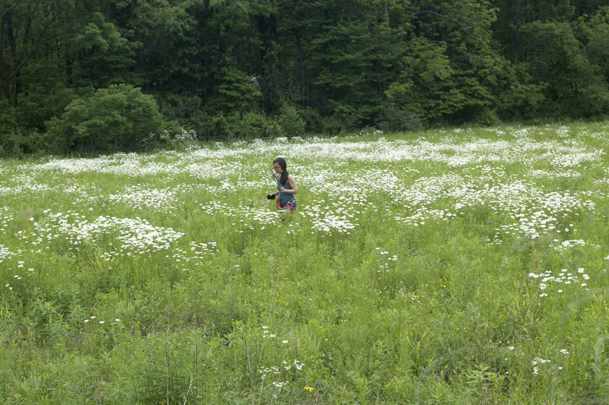 anne in field.web.jpg