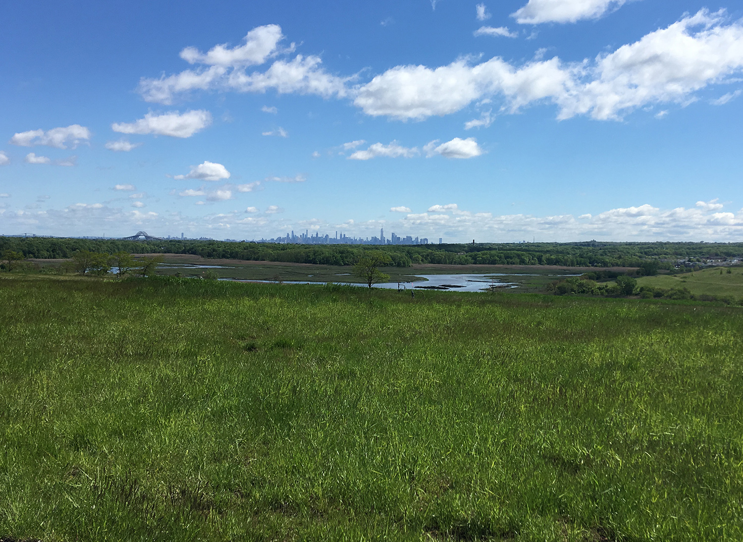 FRESHKILLS PARK - MAY 15th • STATEN ISLAND