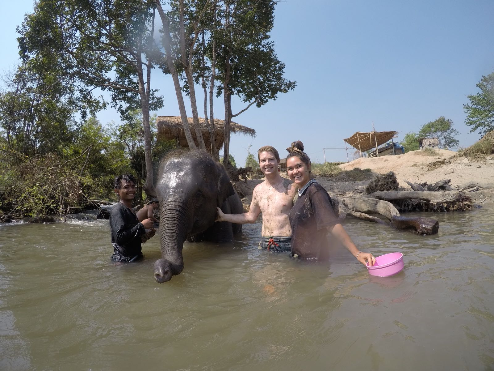 Bath time with the baby Elephant