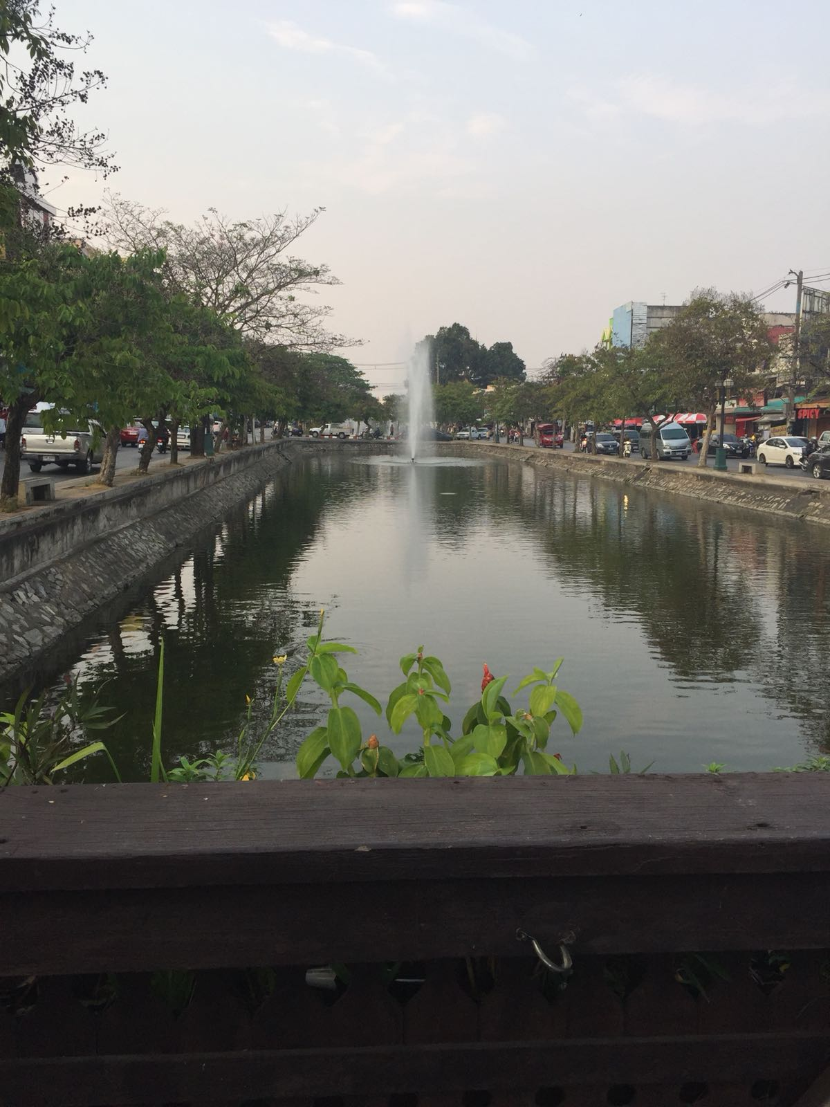 The moat around the Old City in Chiang Mai